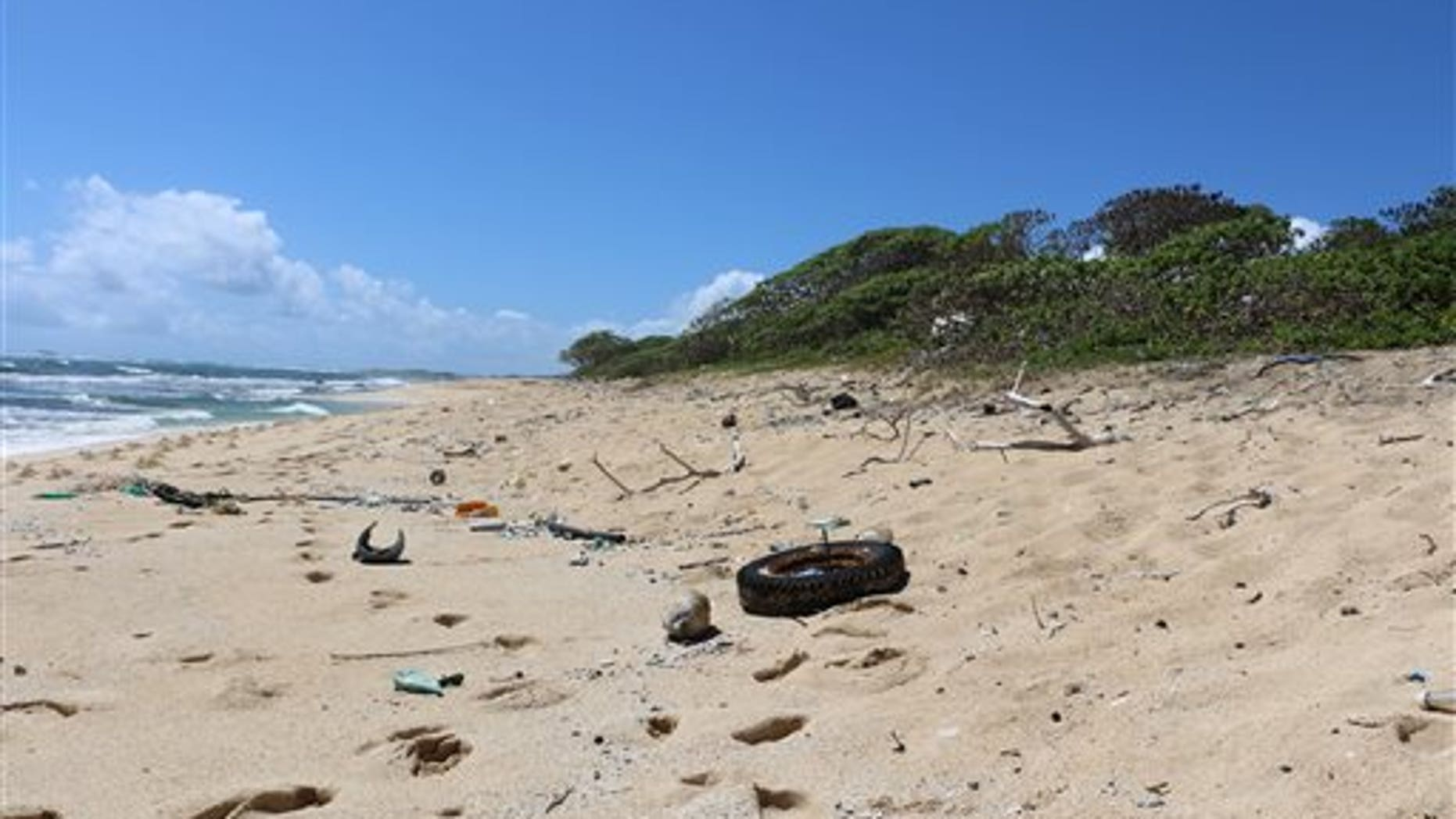 In this May 5, 2016 image provided by the state of Hawaii, ocean debris accumulates in Kahuku, Hawaii on the North Shore of Oahu.