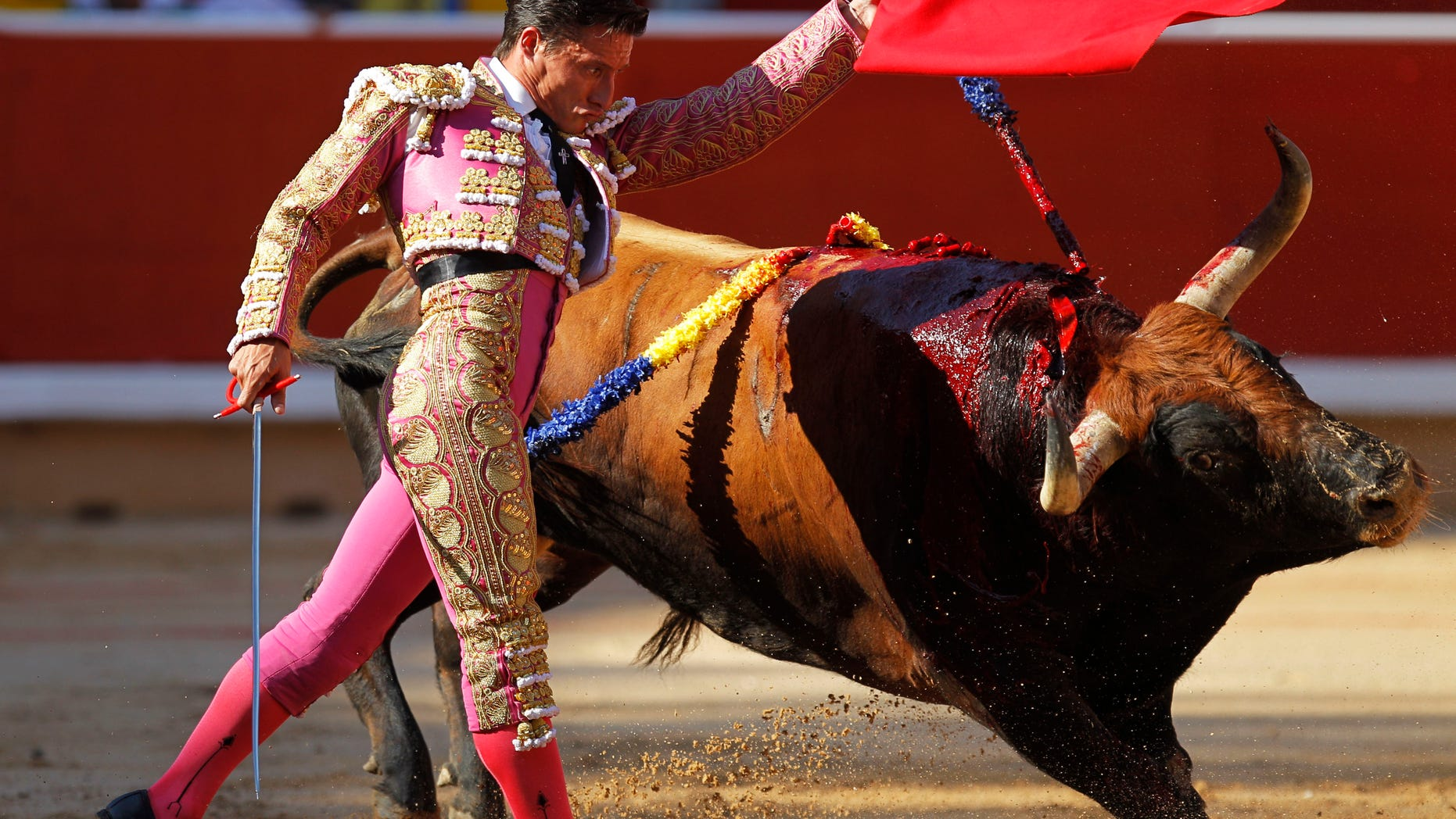 Spanish bullfighter Diego Urdiales makes a pass to Penajara ranch bull during the first bullfight of the San Fermin fiestas on Wednesday, July 7, 2010, in Pamplona, Spain. (AP Photo/Victor R. Caivano)