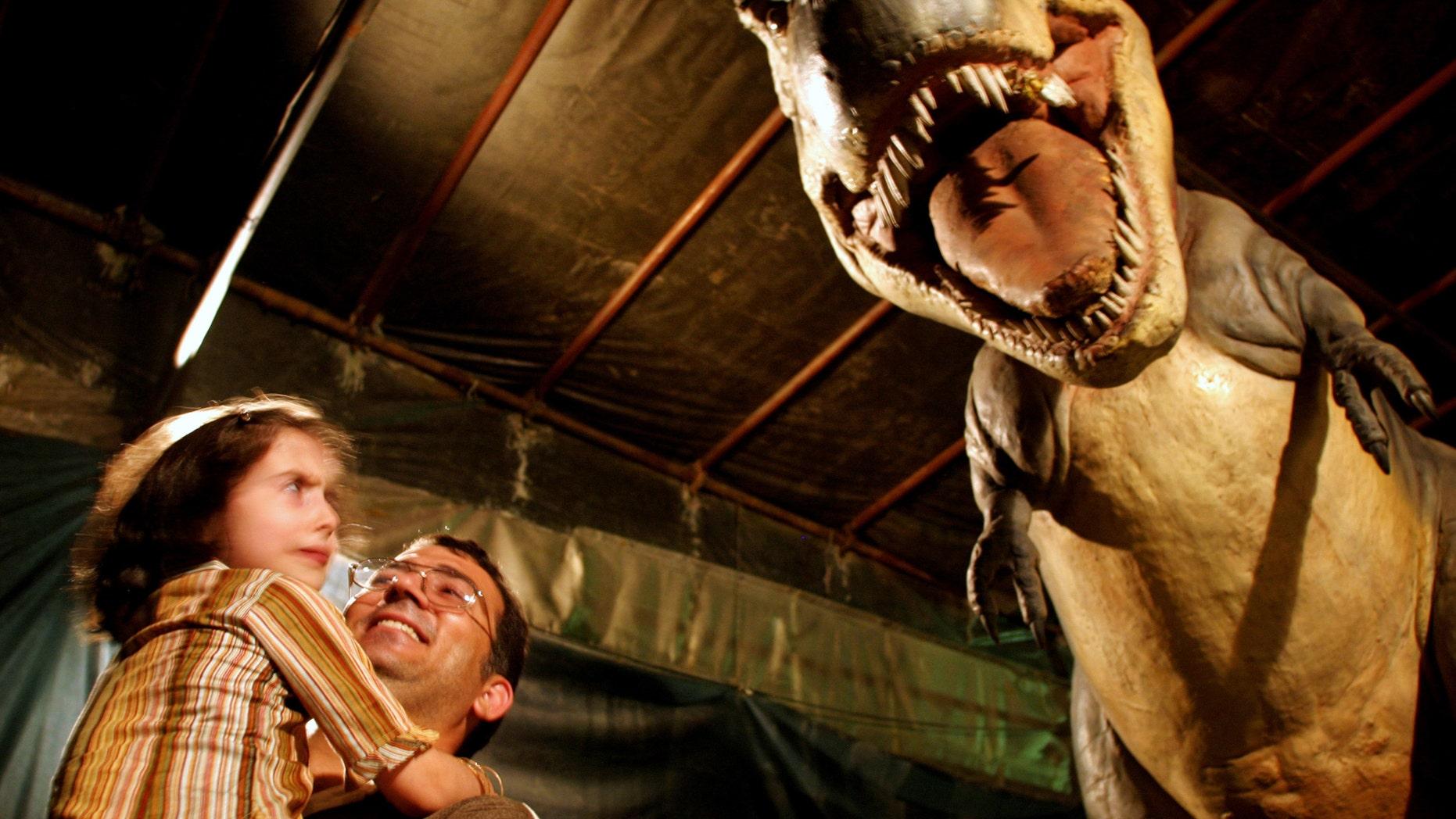 File photo: Iranian girl looks at a life sized robot of a Tyrannasaurus rex at Tehran's Jurassic Park dinosaur exhibition. An Iranian girl looks at a life sized robot of a Tyrannosaurus rex at a Jurassic Park dinosaur exhibition in Tehran July 6, 2005. (REUTERS/Morteza Nikoubazl)