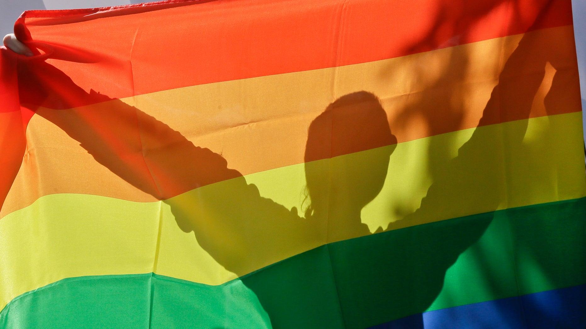 An activist in Ukraine's first gay pride demonstration seen through the rainbow flag in Kiev, Ukraine, May 25, 2013. (AP Photo/Efrem Lukatsky)