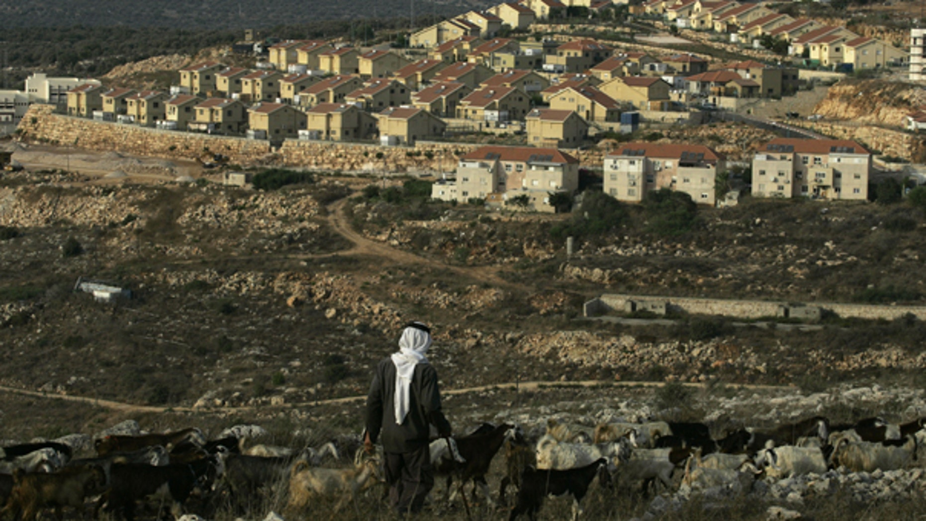 Sept. 25: A Palestinian shepherd walks near the Jewish settlement of Revava, near the West Bank Village of Salfit. Danny Danon, a pro-settler lawmaker in Netanyahu's Likud Party, said Saturday that settlers have already moved equipment into the Revava settlement in the northern West Bank.