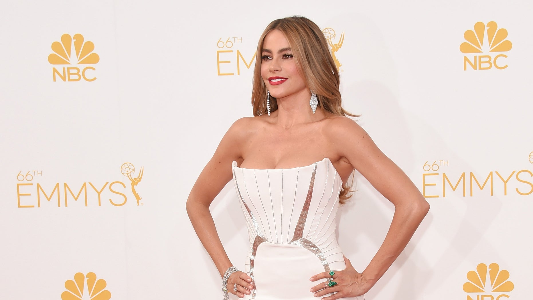 LOS ANGELES, CA - AUGUST 25:  Actress Sofia Vergara attends the 66th Annual Primetime Emmy Awards held at Nokia Theatre L.A. Live on August 25, 2014 in Los Angeles, California.  (Photo by Jason Merritt/Getty Images)