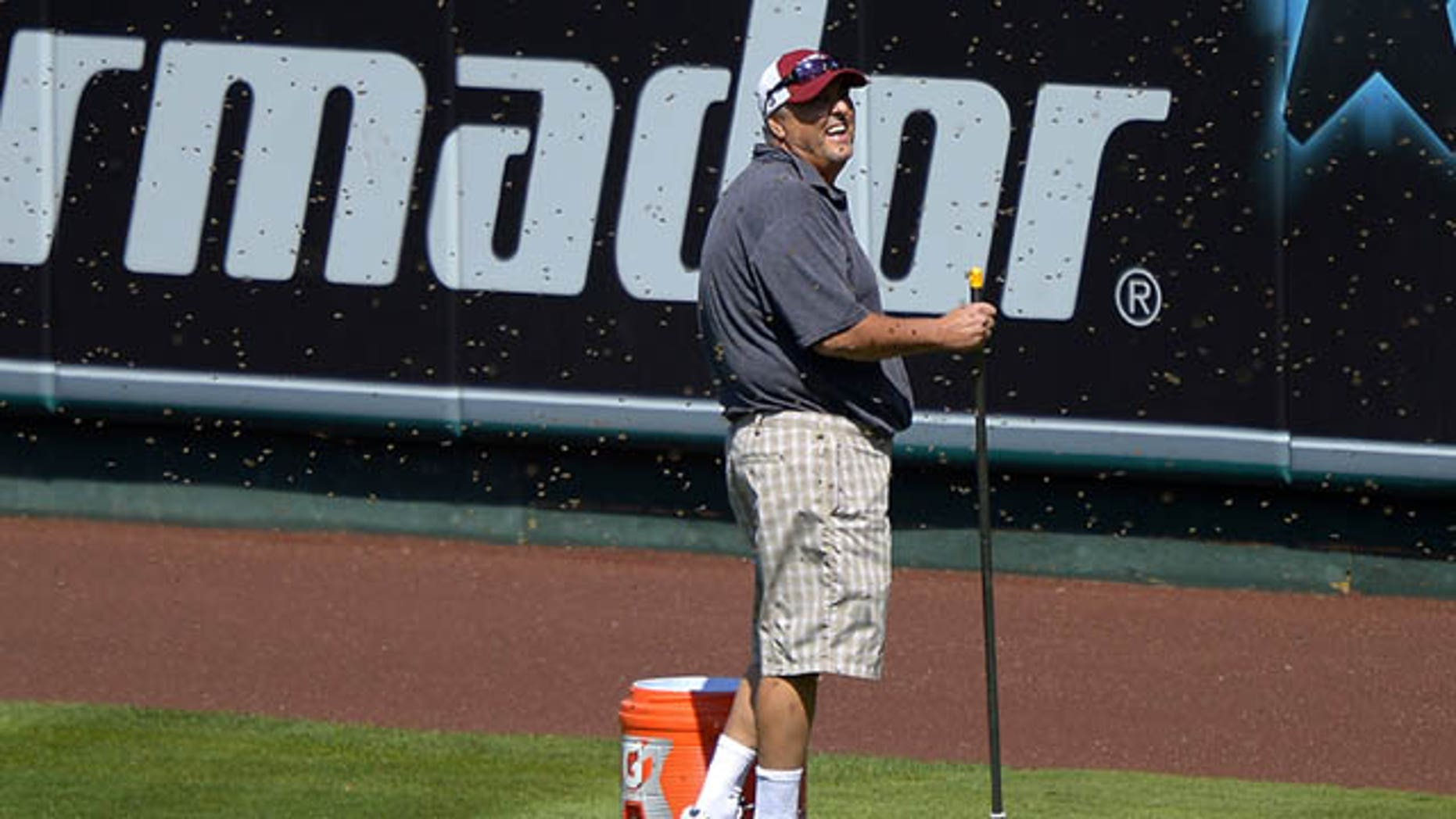 September 22, 2013: Apiarist John Potom, of Honey Pacifica, deals with a swarm of bees that held up a baseball game between the Los Angeles Angels and the Seattle Mariners for several minutes during the third inning on Sunday in Anaheim, Calif. (AP Photo)