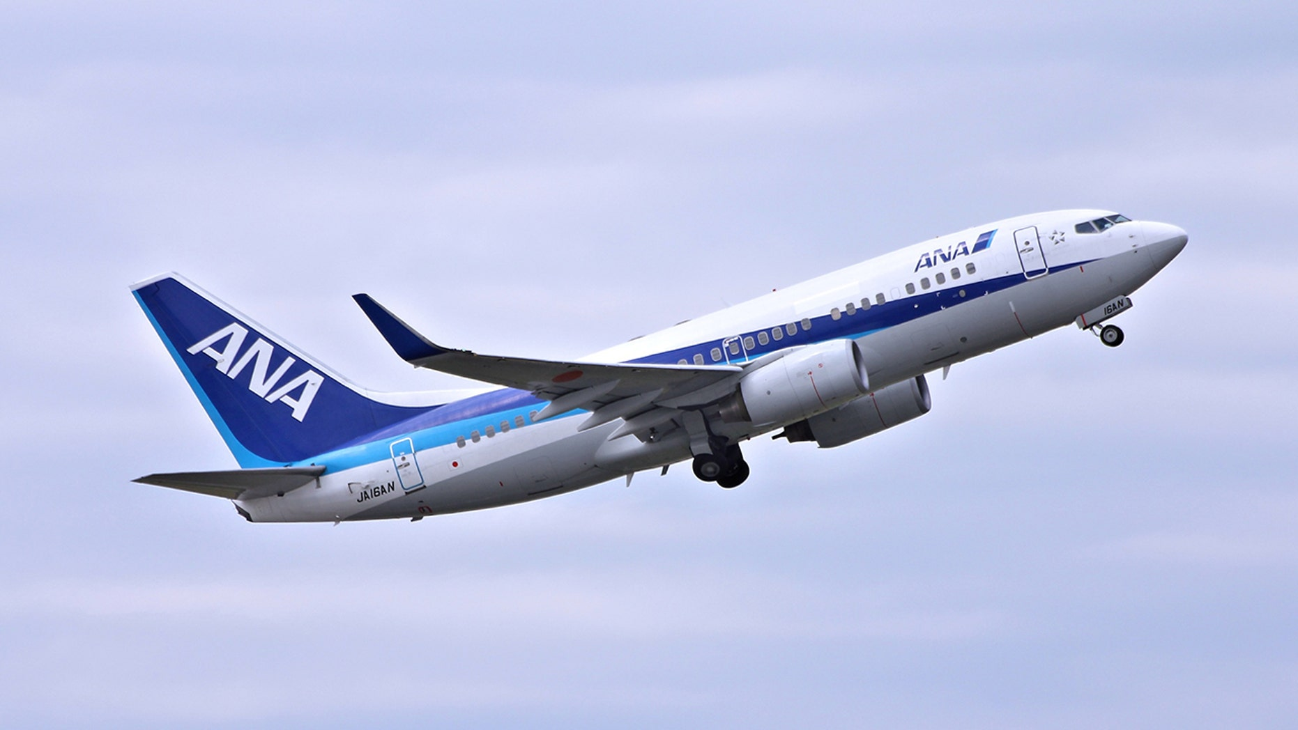 A 24-year-old man allegedly peed on a 50-year-old fellow passenger on an All Nippon Airways flight to Japan.
