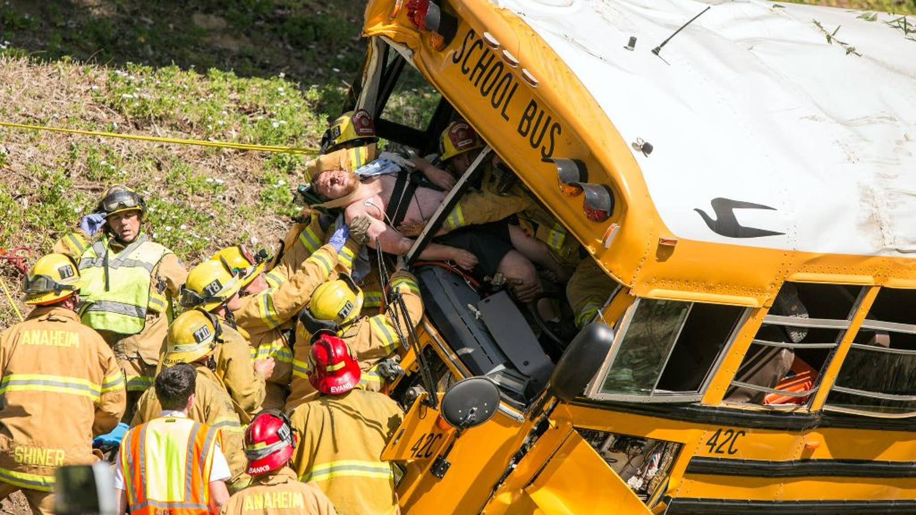 Firefighters extricate the driver from the front of a school bus that crashed, Thursday, April 24, 2014, in Anaheim, Calif. Three of the injured, the driver and two of the children, were taken to hospitals in critical condition after the crash, Anaheim police Lt. Bob Dunn said. The other nine students had minor injuries, and most of them were released to their parents. Police say no other vehicles were involved in the crash and there is no immediate word on the cause. (AP Photo/Kevin Warn)
