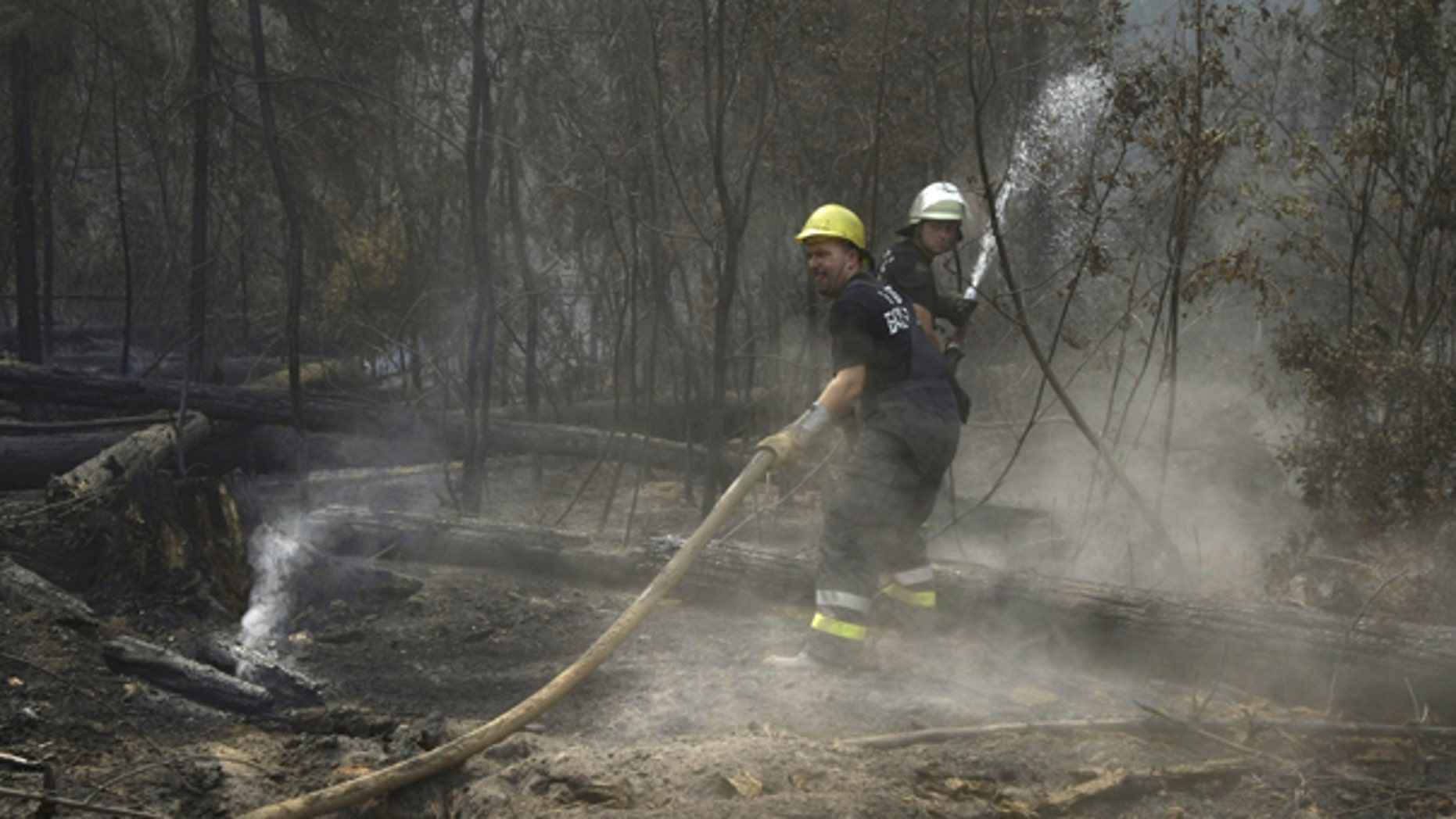 Aug. 10: Unidentified Bulgarian fire fighters hose water onto smoldering tree trunks in a forest in the Noginsk district some 70 km east of Moscow. Hundreds of forest and peat bog fires have ignited amid the country's most intense heat wave in 130 years of record-keeping.