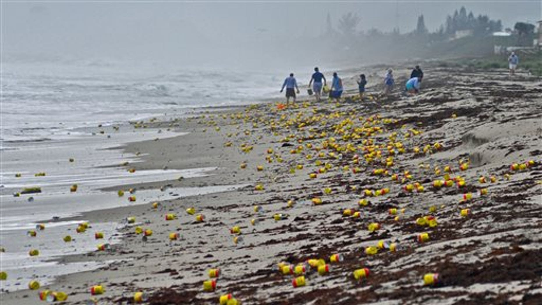 Thousands of cans and vacuum packed bricks of Cafe Bustelo brand coffee have washed up on the beaches of Indialantic, Fla., on Tuesday, Dec. 8, 2015, most likely from a barge container that had fallen overboard this past weekend. The coffee began washing ashore along an area over a mile long in Brevard County, on the east coast of Cental Florida. People began cleaning up the mess, or decided to enjoy some free java. (Tim Shortt/Florida Today via AP)