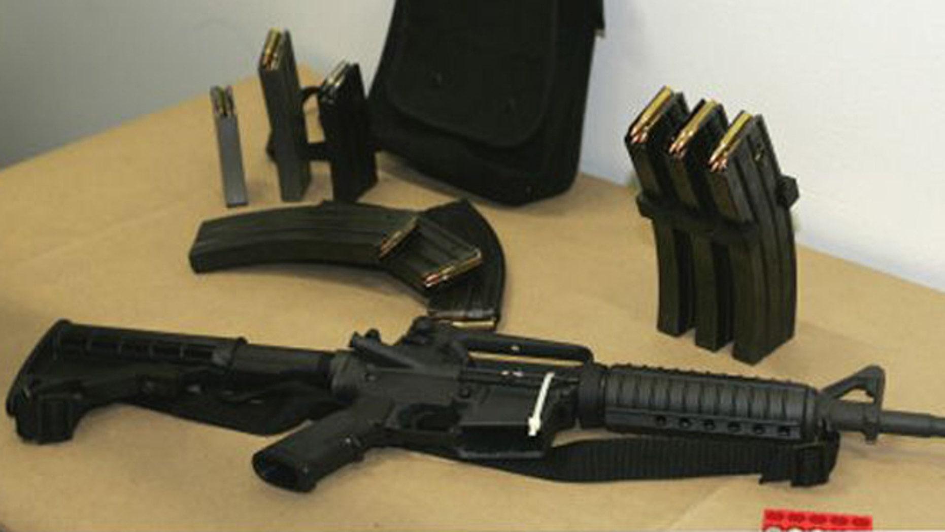 FILE: Bushmaster AR-15 semi-automatic rifle and ammunition.
