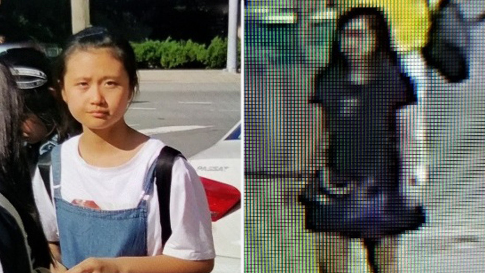 Virginia police issued an Amber Alert on Thursday for a 12-year-old girl from China who they believe was abducted from Ronald Reagan Washington National Airport.