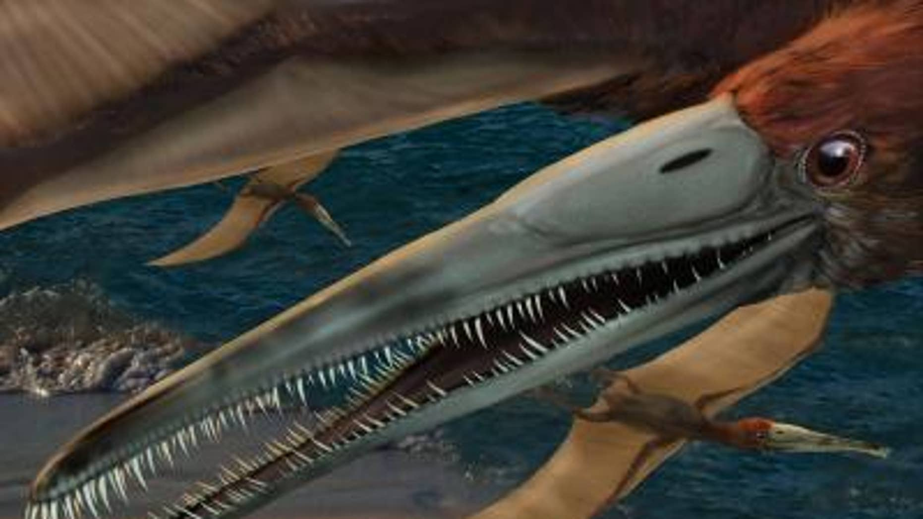 A 95 million-year-old fossilized jaw discovered in Texas has been identified as a new genus and species of flying reptile. Aetodactylus halli, seen in this artist's rendering, was identified and named by paleontologist Timothy S. Myers.