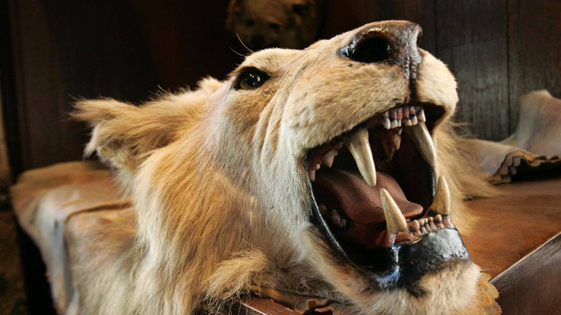Delta has banned the shipment of lion, leopard, elephant, rhinoceros and buffalo trophies.