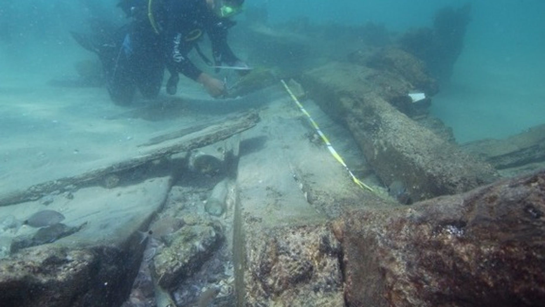 Four shipwrecks buried off the coast of Israel may reveal the site of an ancient Greek harbor.