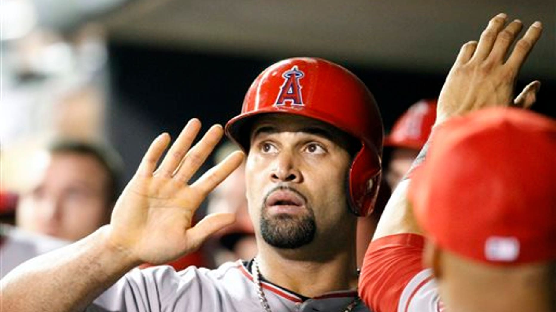 Los Angeles Angels' Albert Pujols is congratulated by teammates in the dugout after scoring on a single by Howie Kendrick off Minnesota Twins relief pitcher Anthony Swarzak during the ninth inning of a baseball game in Minneapolis, Saturday, Sept. 6, 2014. The Angels won 8-5. (AP Photo/Ann Heisenfelt)