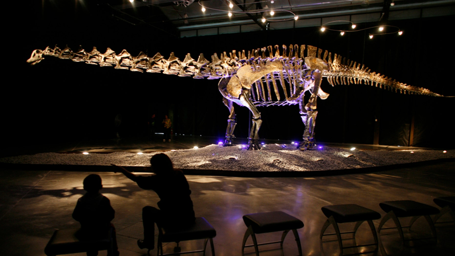 """File photo - visitors look at the skeleton of an Apatosaurus named """"Einstein"""" displayed at the Lewis hall in Fundidora park in Monterrey, northern Mexico, Sept. 23, 2009."""