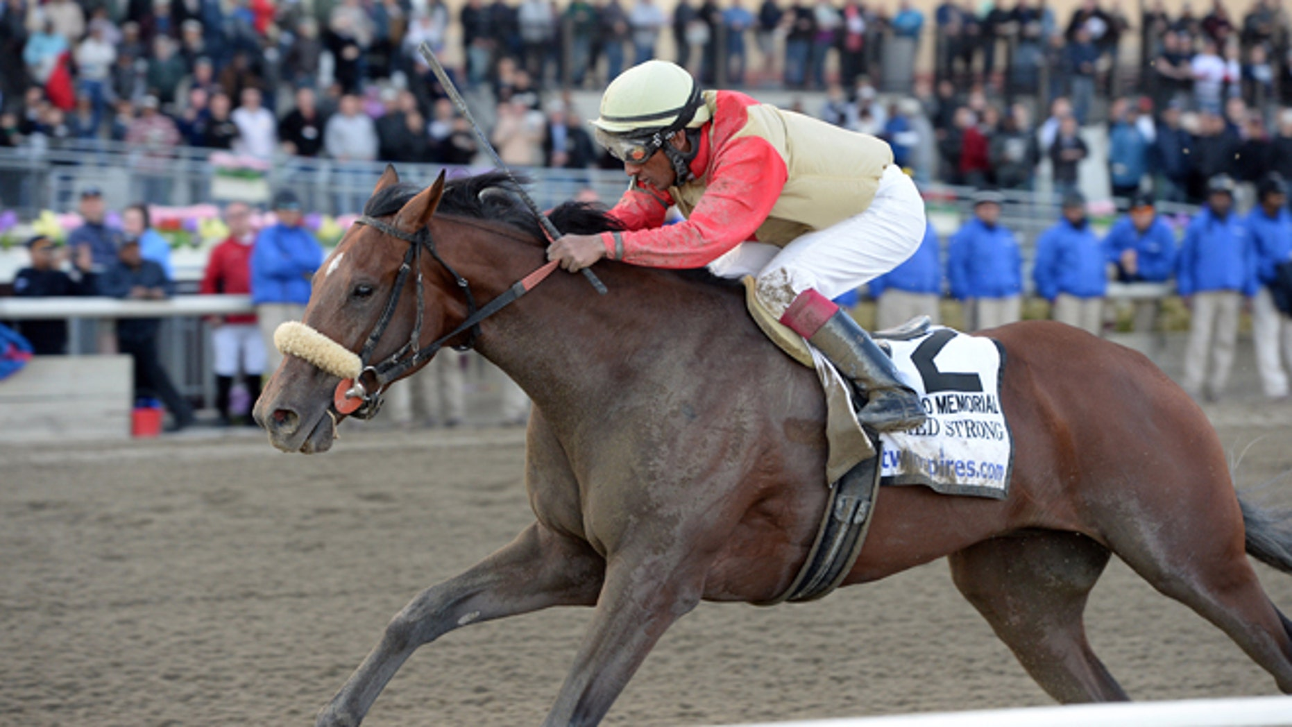 Wicked Strong, with Rajiv Maragh aboard, captures The Wood Memorial Stakes horse race Saturday, April 5, 2014.