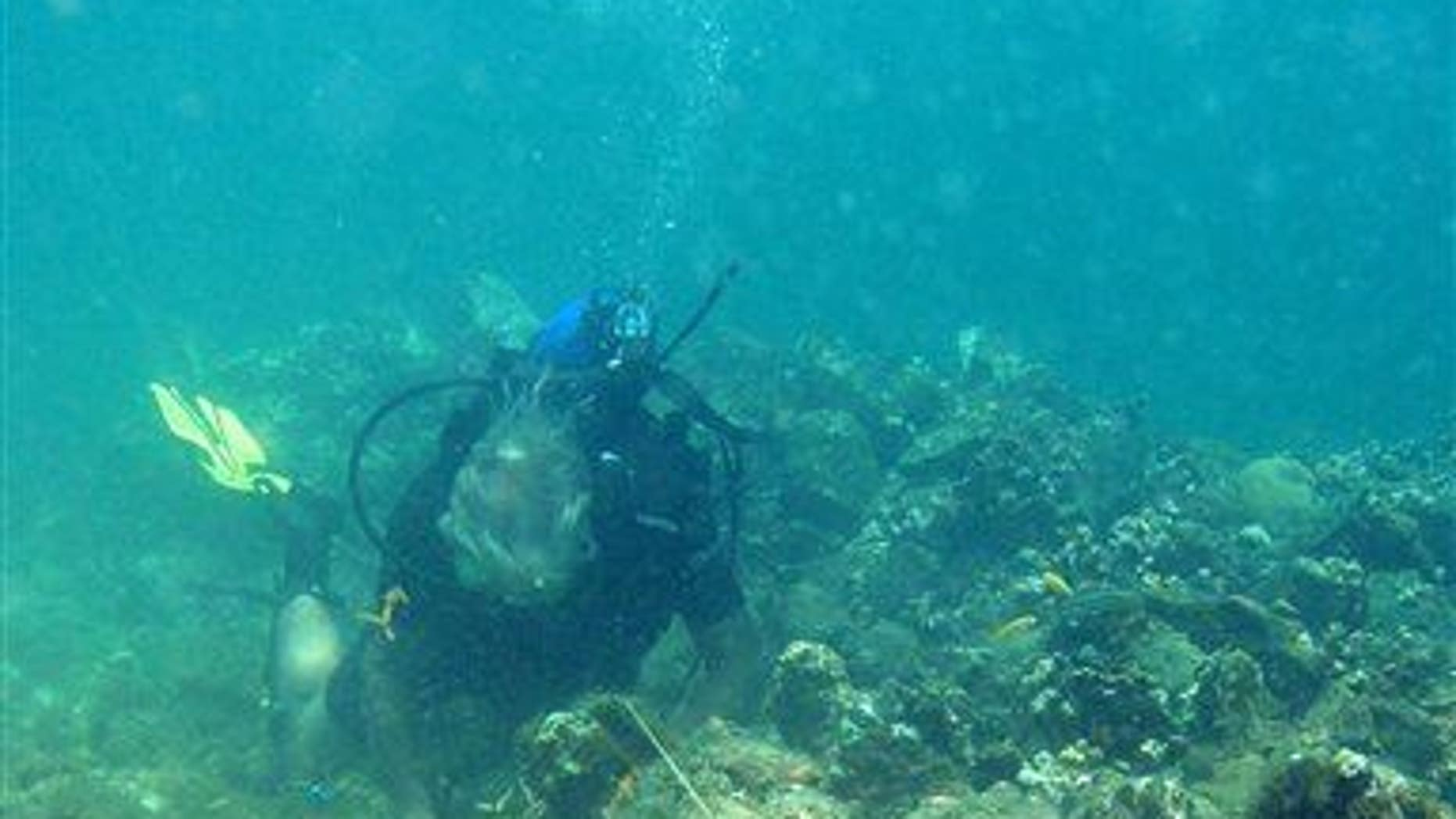 In this May 2003 photo, a diver measures a cannon adjacent to a ballast pile off the coast of Haiti at a site explorer Barry Clifford says could be the wreckage of Columbus's vessel the Santa Maria.