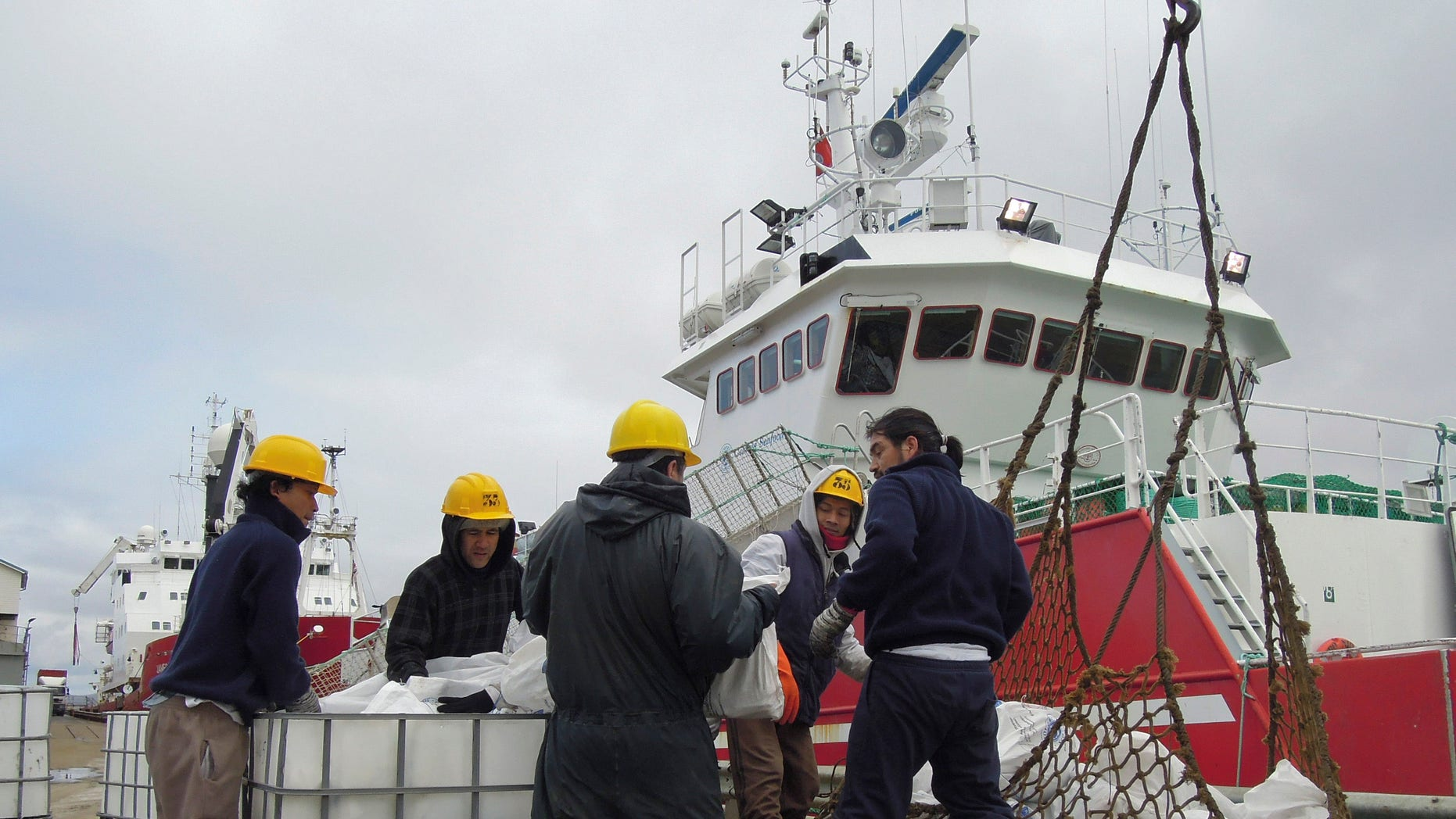 In this March 14, 2013 photo, workers offload fish from a fishing ship in Port Stanley, Falklands Islands.