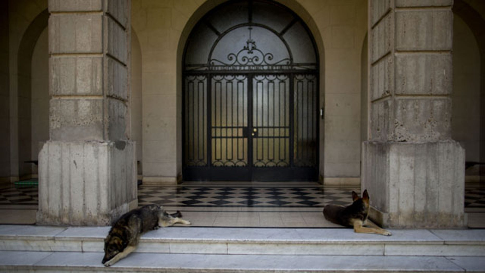 November 29, 2013: Two dogs lie on the entrance of the Colegio Maximo in Buenos Aires, Argentina. Jorge Mario Bergoglio, now Pope Francis, studied philosophy and theology and became a priest at this school. He also lived there in different periods of his life, first when he served as Provincial of the Jesuits in Argentina from 1975 to 1979 and later, when he became Rector between 1979 and 1986. (AP)