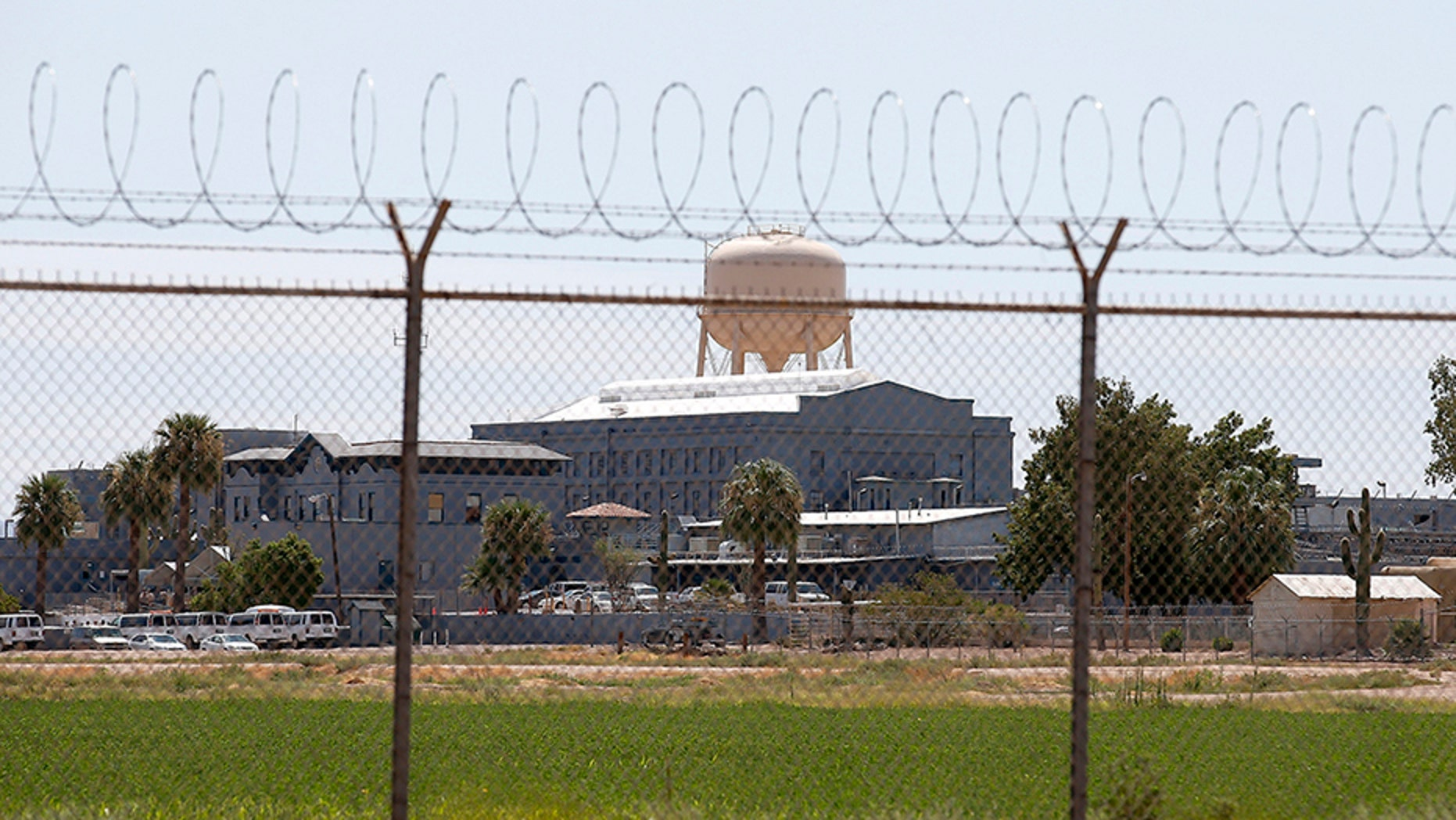 Five prisoners sitting on Arizona's death row have died of Hepatitis-related causes.