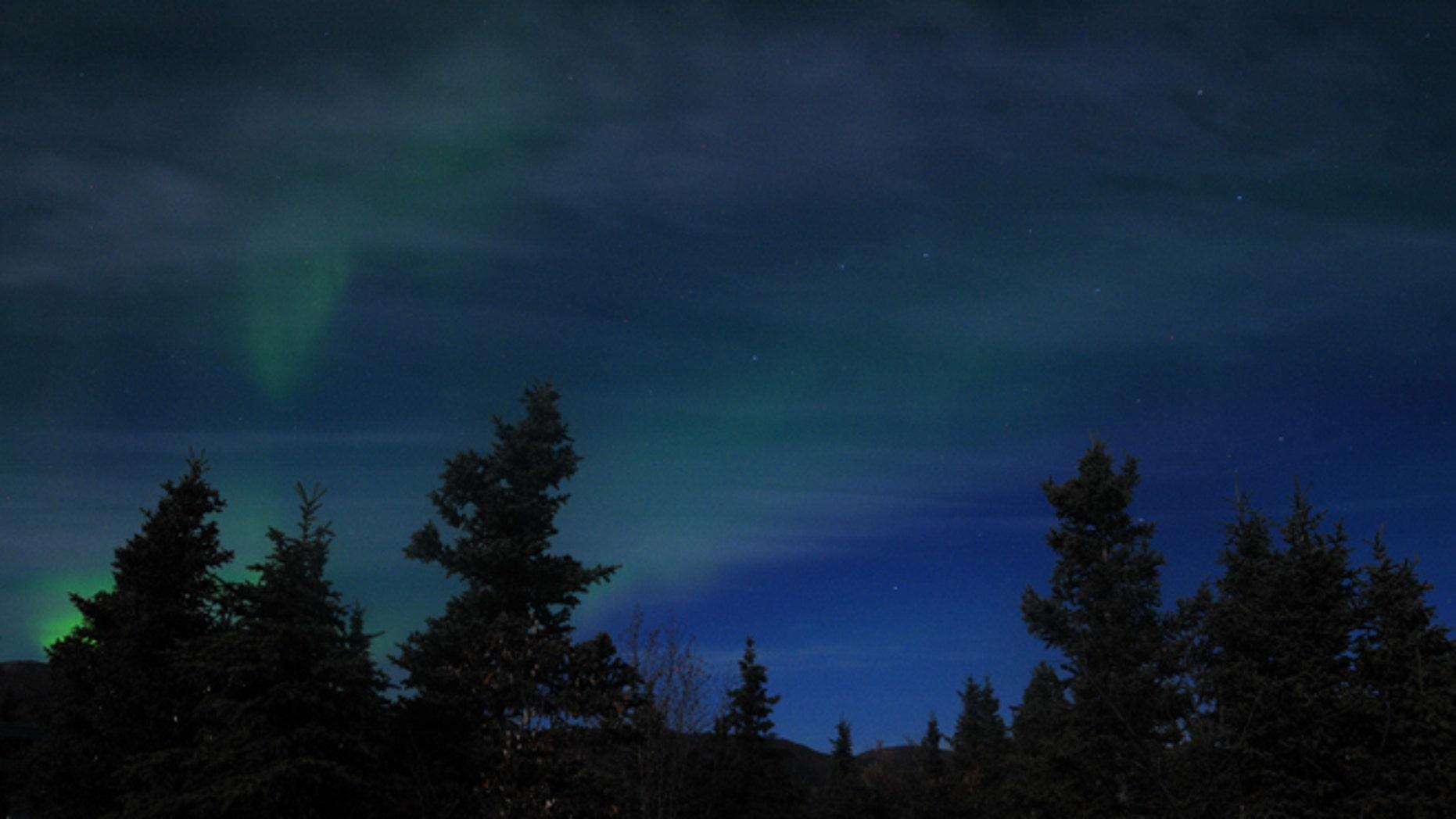 Aurora borealis at Denali National Park and Preserve in Alaska