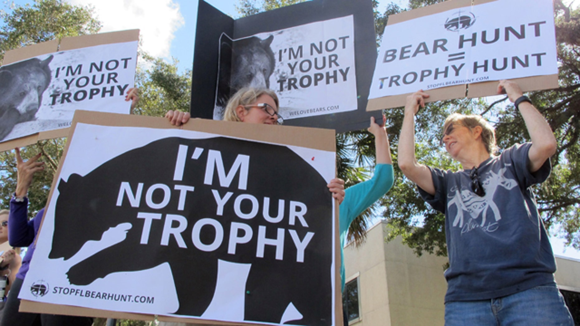 Oct. 23, 2015: Protesters opposed to bear hunting in Florida demonstrate on a street in downtown Gainesville. (AP Photo/Jason H. Dearen)