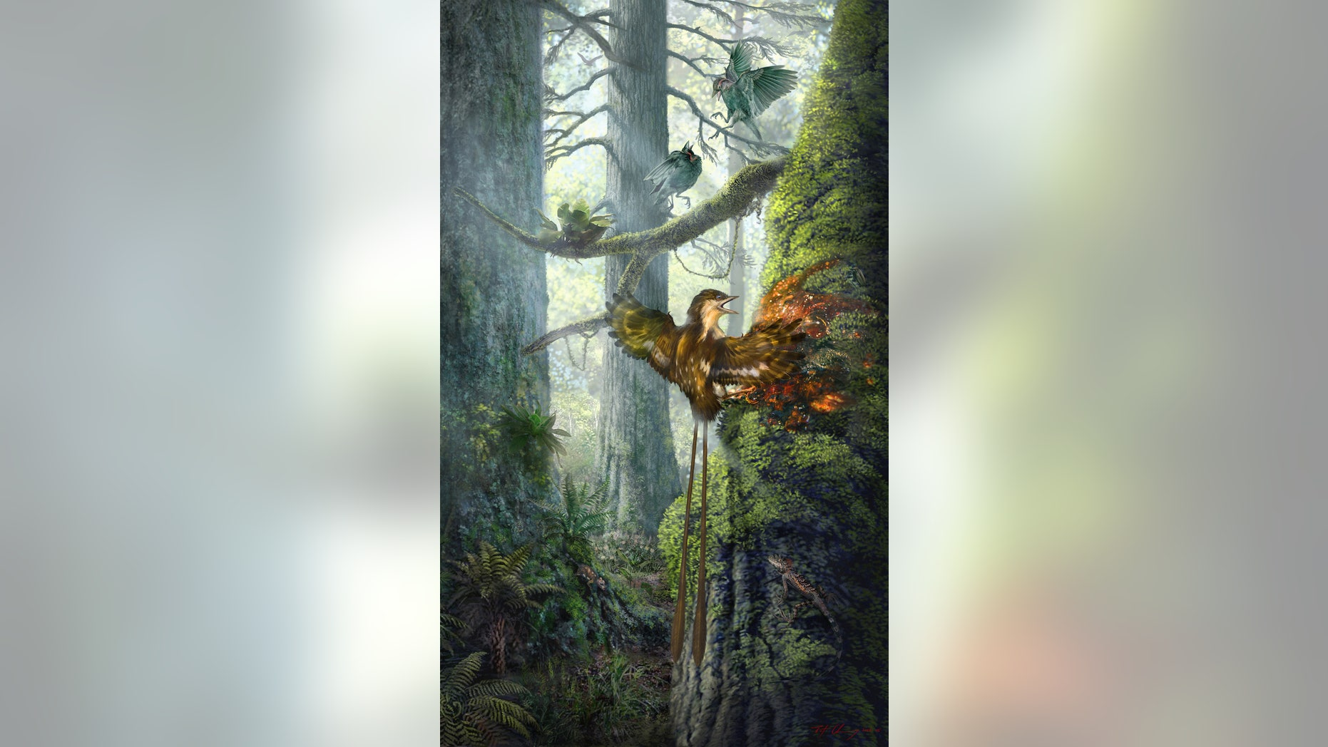 """An ancient, hummingbird-size bird got its wing stuck in sticky tree resin and likely struggled for its life about 99 million years ago. Researchers nicknamed this specimen """"Angel Wing."""""""