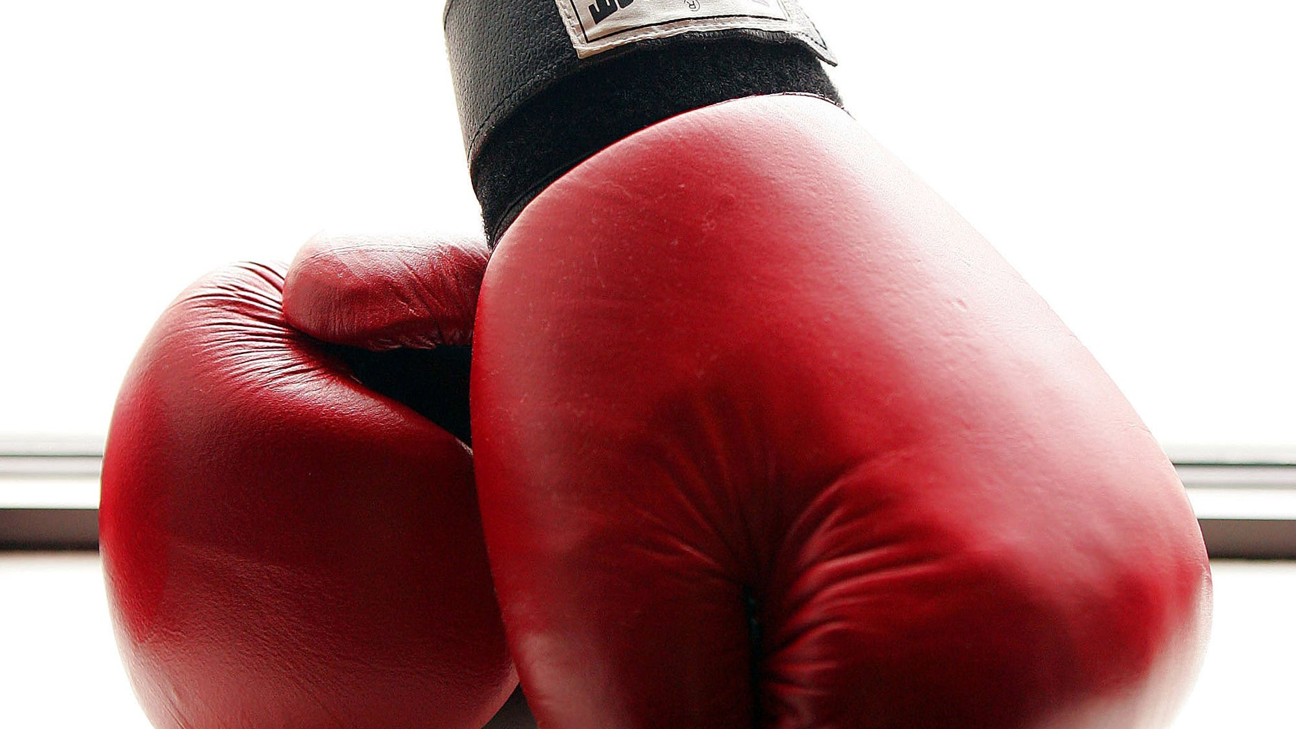 NEW YORK - AUGUST 26:  Boxing gloves at the Aerospace Performance Center on August 26, 2005 in New York City. (Photo by Scott Gries/Getty Images)