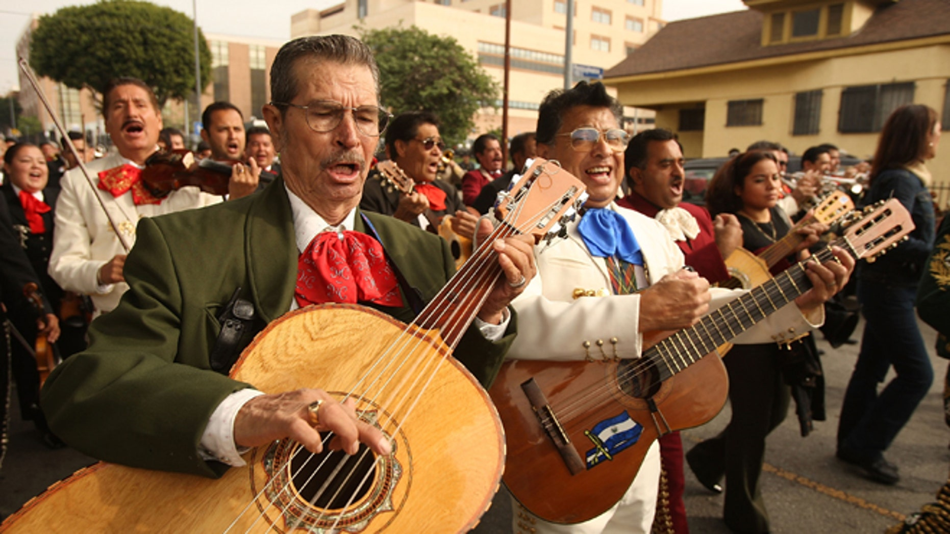 LOS ANGELES, CA - NOVEMBER 25:  Mariachis play as they march down a street during the annual procession and Mass in honor of the Feast Day of St. Cecilia, patron saint of music, on November 25, 2008 in the Boyle Heights neighborhood of Los Angeles, California. The procession takes place near Mariachi Plaza where Mexican musicians wait curb-side for customers to hire them. Mariachi, the best-known form of traditional Mexican music, is believed to have started in the nineteenth century in the Mexican state of Jalisco, supposedly in the town of Cocula.  (Photo by David McNew/Getty Images)