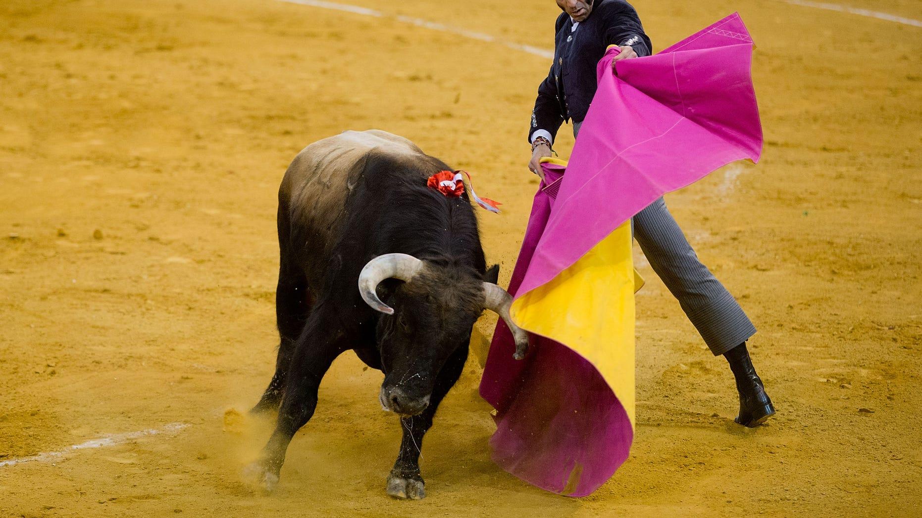 MADRID, SPAIN - MARCH 22:  Spanish bullfighter Juan Jose Padilla performs during  the Bullfighting Charity Festival held in honor of Spanish Banderillero Vicente Yanguez alias El Chano at Palacio Vistalegre Arena bullring on March 22, 2014 in Madrid, Spain.  (Photo by Gonzalo Arroyo Moreno/Getty Images)