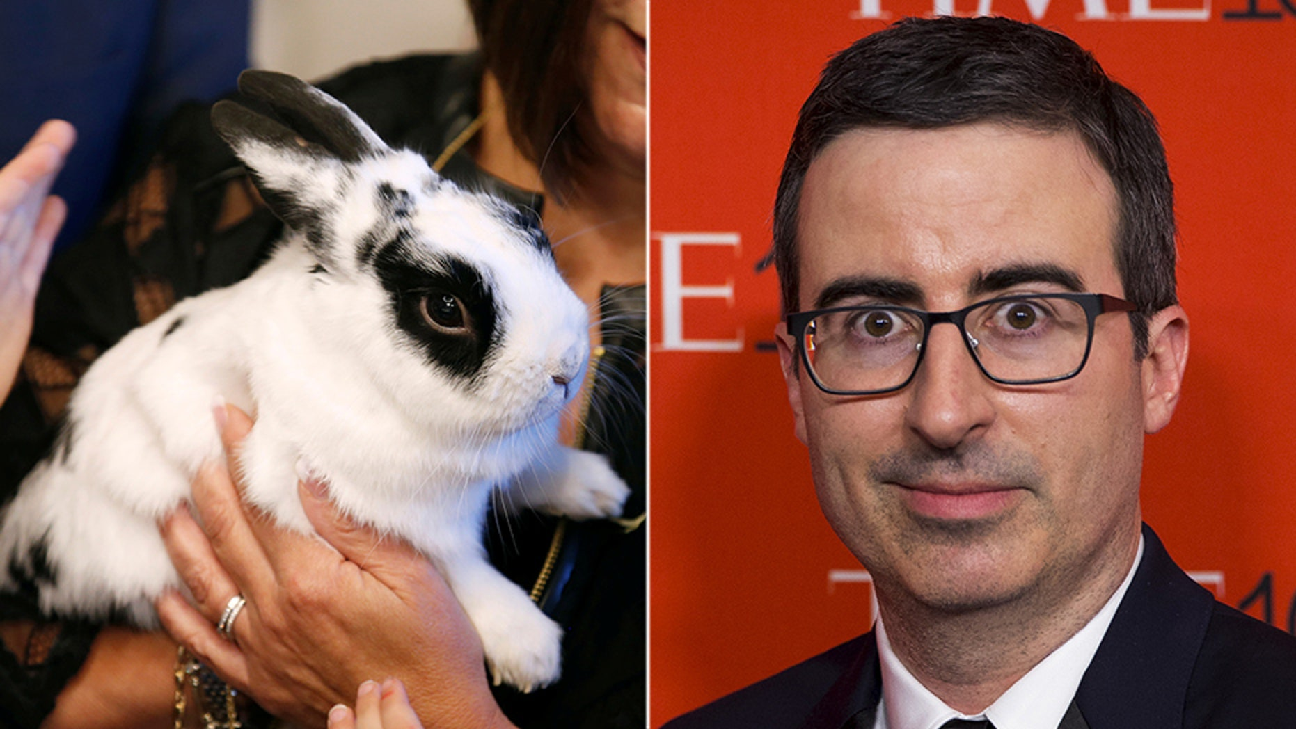 Comedian John Oliver faced backlash over a children's book that Vice President Mike Pence's daughter wrote -- about the family's rabbit.