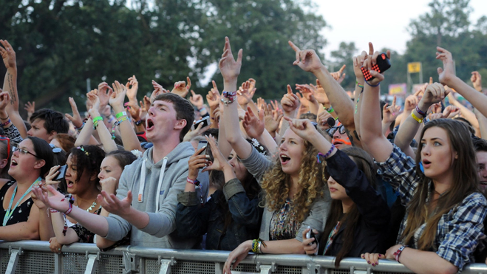 CHELMSFORD, ENGLAND - AUGUST 17:  Festival Goers watch Tinie Tempah perform on Day 2 of the V Festival at Hylands Park on August 17, 2014 in Chelmsford, England.  (Photo by Stuart C. Wilson/Getty Images)