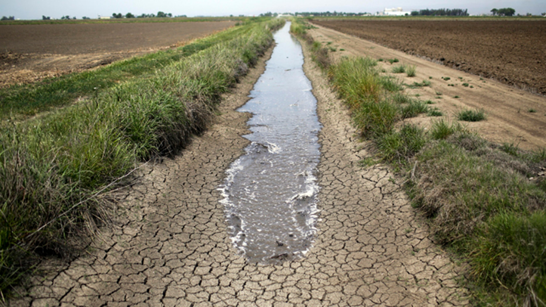 FILE - This May 1, 2014, file photo shows irrigation water running along a dried-up ditch between rice farms in Richvale, Calif. (AP Photo/Jae C. Hong, File)