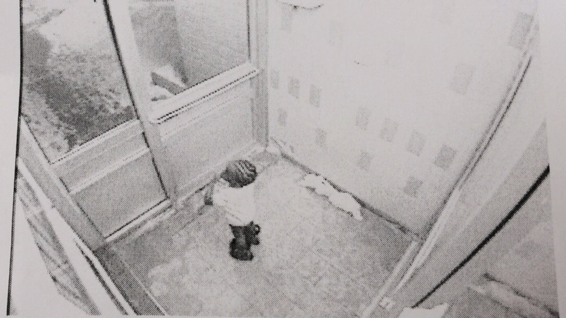 In this frame grab from security camera video provided by the Toronto Police Service via The Canadian Press, 3-year-old Elijah stands in an apartment building lobby, early Thursday, Feb. 19, 2015, in Toronto. Elijah was found dead later Thursday morning after wandering away from the apartment building into bitterly cold weather. (AP Photo/Toronto Police Service via The Canadian Press)