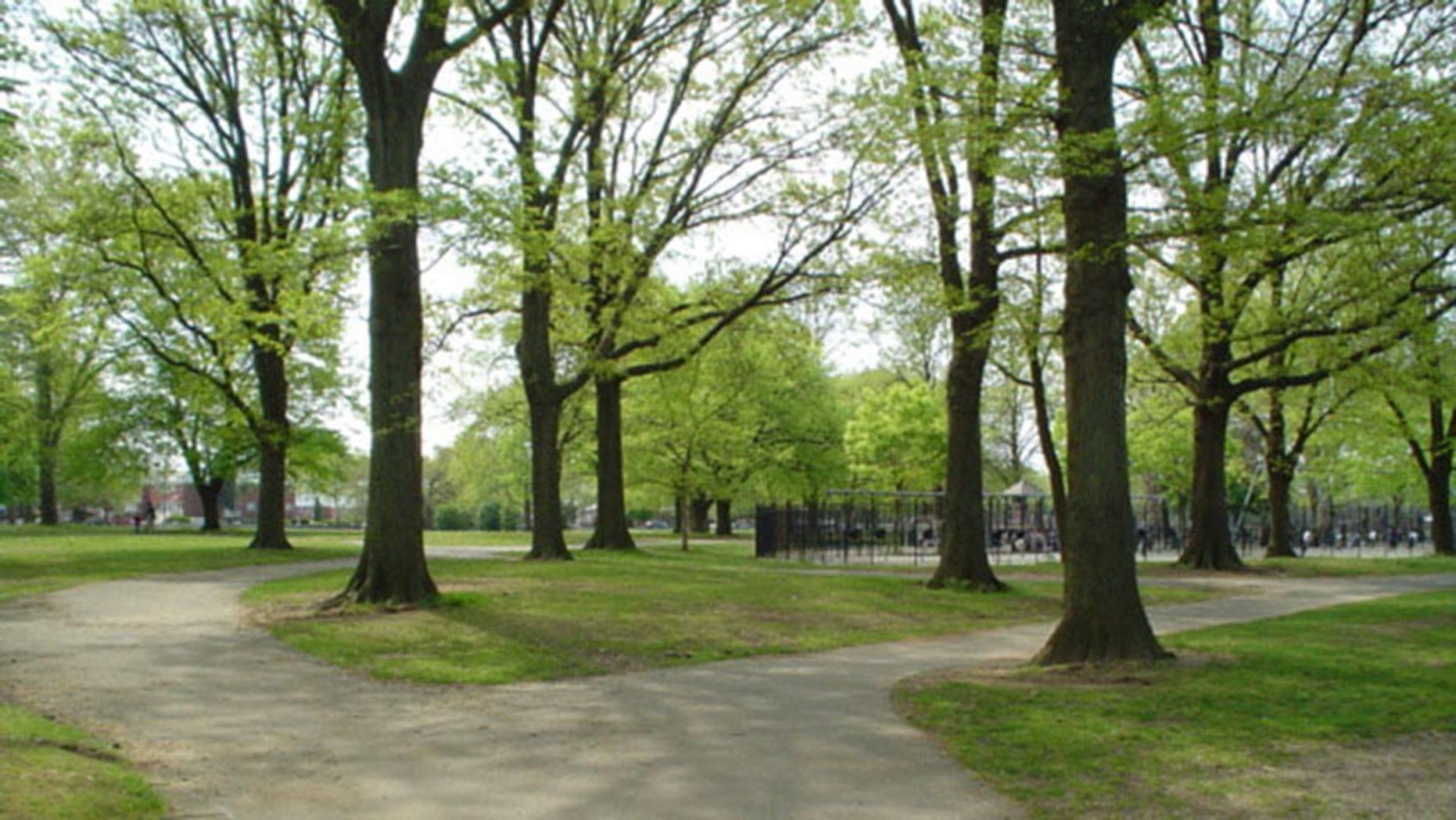 Canarsie Park in Brooklyn, N.Y.