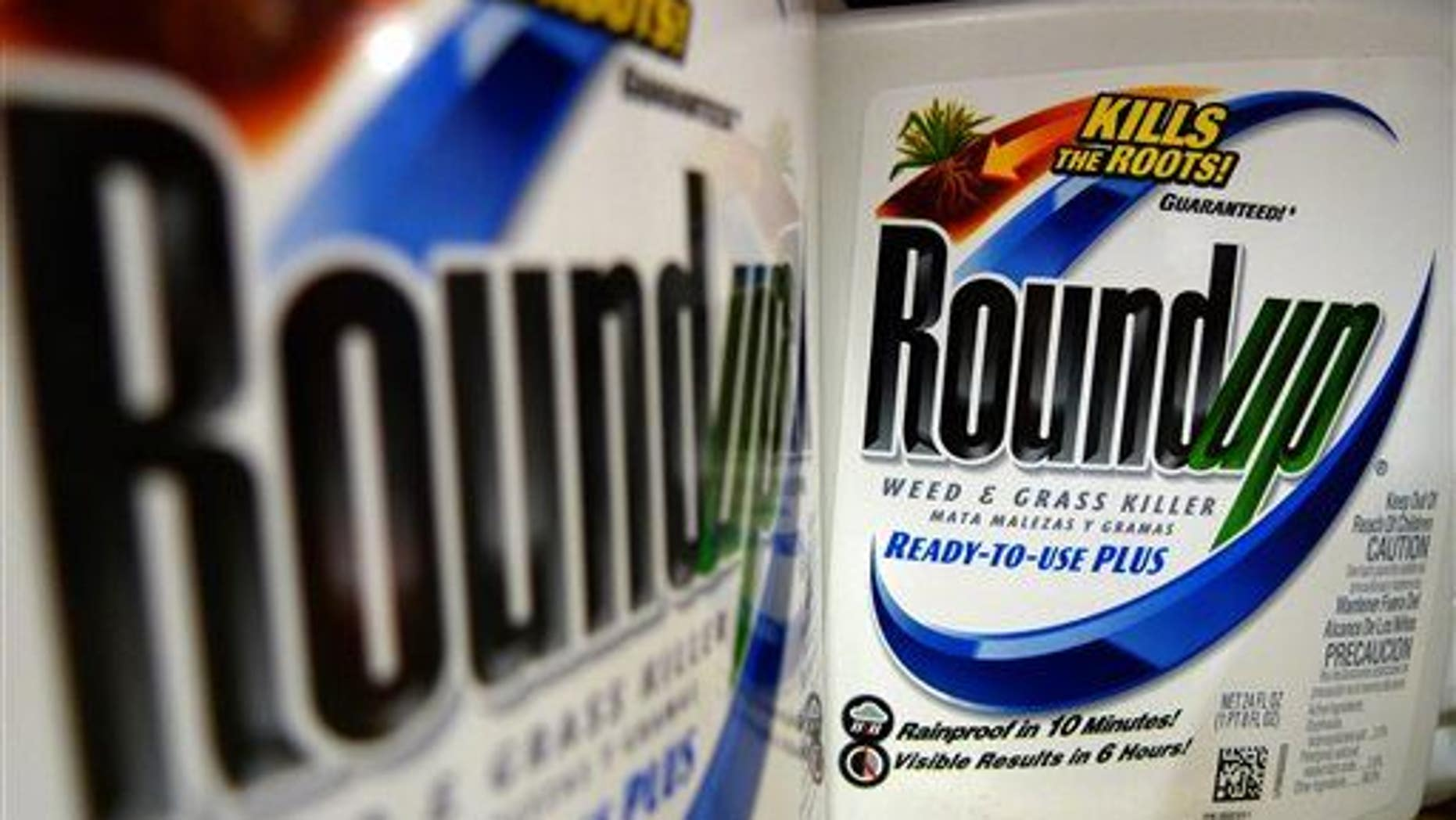 This June 28, 2011, file photo shows bottles of Roundup herbicide, a product of Monsanto, on a store shelf in St. Louis.