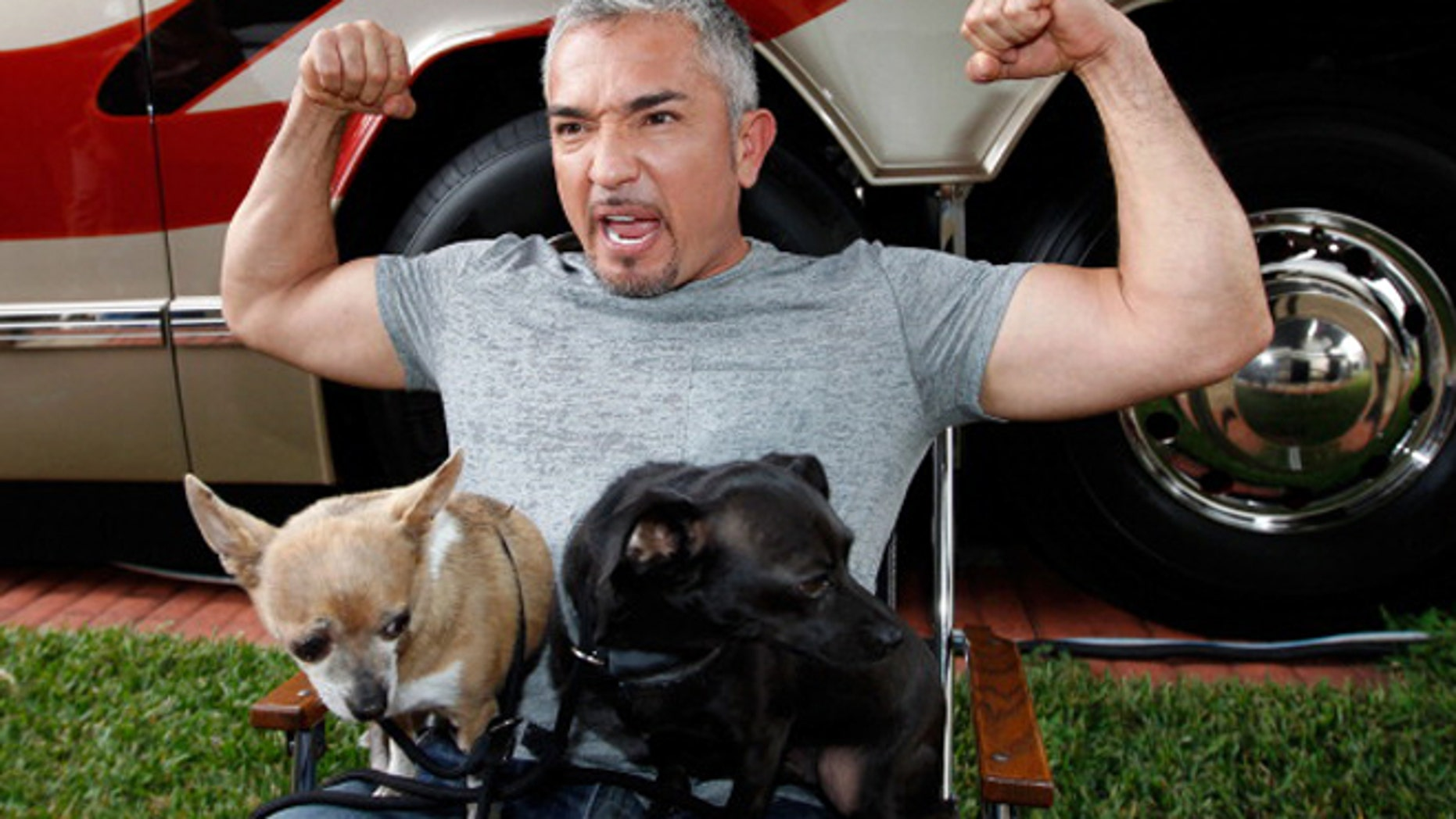 Cesar Millan on February 17, 2012 in Daytona Beach, Florida.