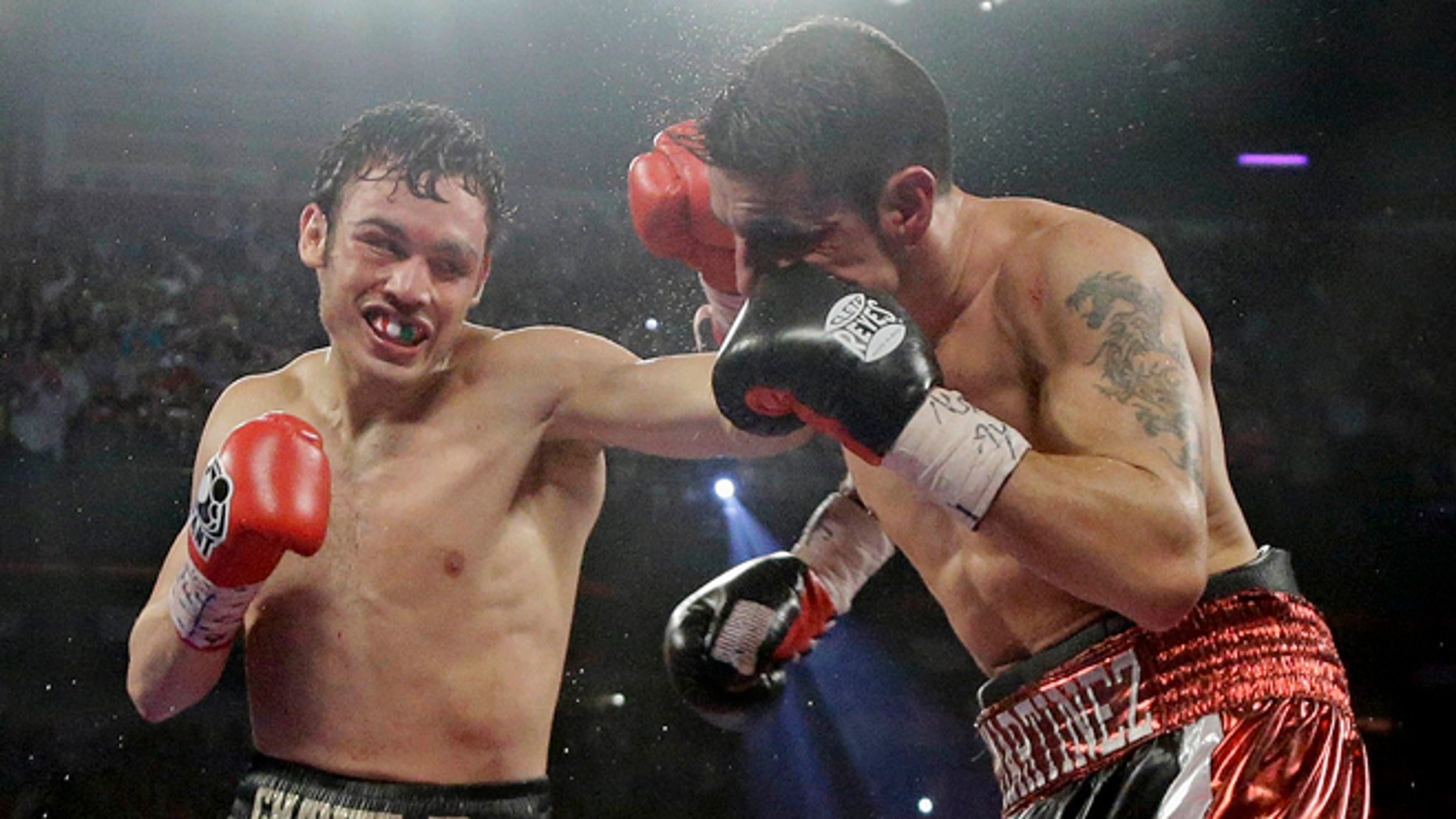 FILE - In this Sept. 15, 2012, file photo, Julio Cesar Chavez Jr., left, lands a punch against Sergio Martinez during the 12th round of their WBC middleweight title fight in Las Vegas. Chavez was suspended for nine months and fined $900,000 by the Nevada State Athletic Commission on Thursday, Feb. 28, 2013, over a failed drug test last year. The 26-year-old Mexican fighter tested positive for marijuana in September after his loss to Martinez. (AP Photo/Julie Jacobson, File)