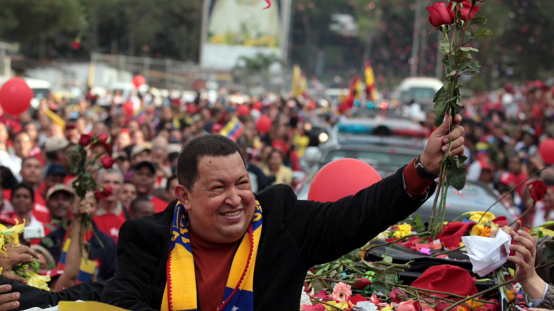Venezuela's President Hugo Chavez holds up flowers thrown by supporters during his caravan from Miraflores presidential palace to the airport in Caracas, Venezuela, Friday Feb. 24, 2012. (AP Photo/Fernando Llano)