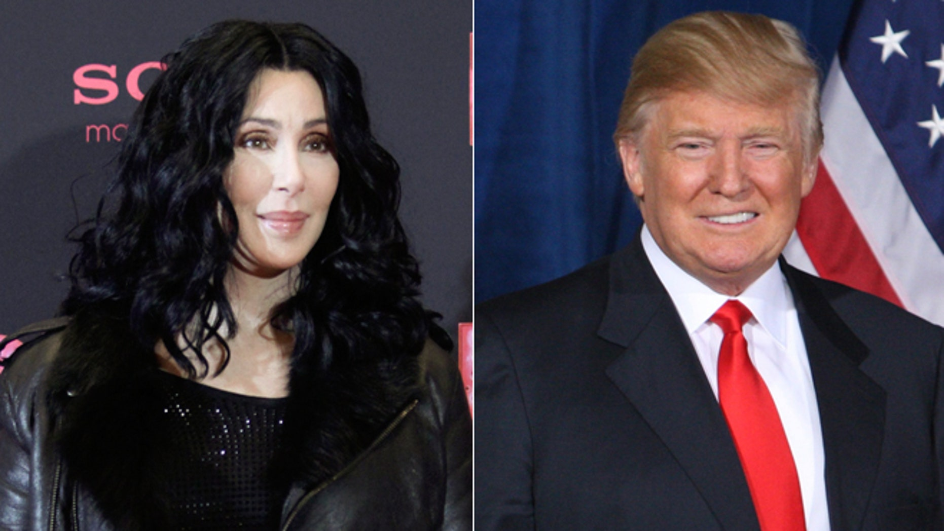"""Cher and Donald Trump got into a Twitter war when she referred to his hair as """"his rug."""""""