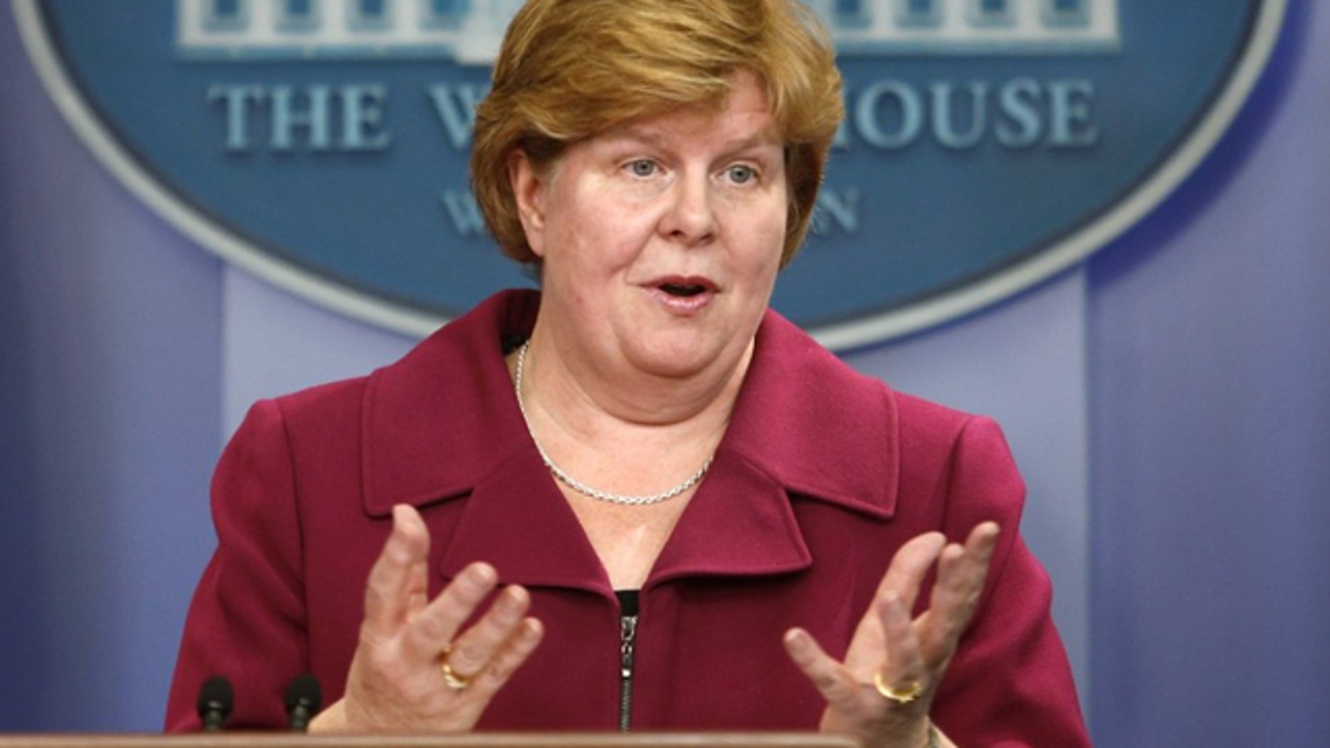 Christina Romer, seen in this February 2010 file photo, plans to step down in September as chairwoman of President Obama's Council of Economic Advisers.