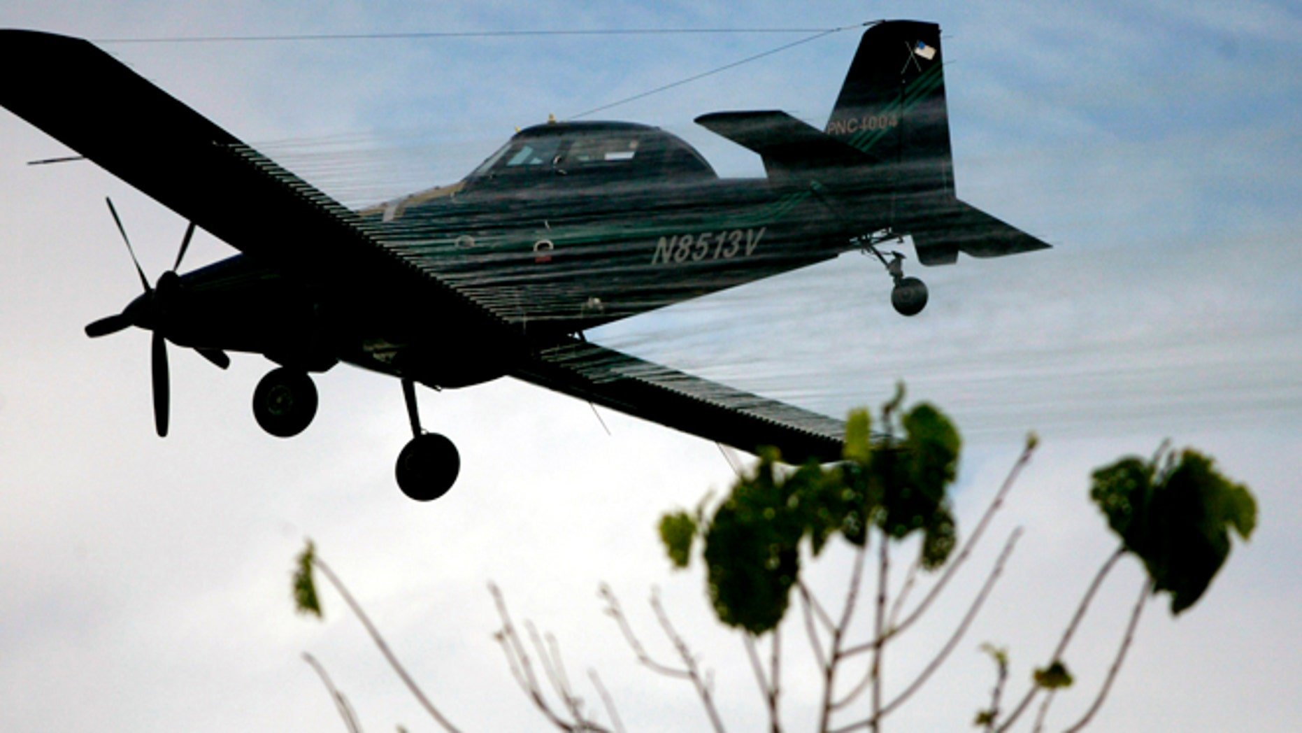FILE - In this Dec. 15, 2006, file photo, a plane sprays coca fields in San Miguel, Colombia. The latest survey by the U.S., released this on May 2015, show that areas under coca cultivation in Colombia shot up 39 percent last year to 112,000 hectares (about 276,000 acres). The White Houses Drug Czar attributed the boom to an increase in crop spraying off-limit areas like Paramillo, one of the countrys 59 national parks and conservation areas where spraying is banned. (AP Photo/William Fernando Martinez, File)