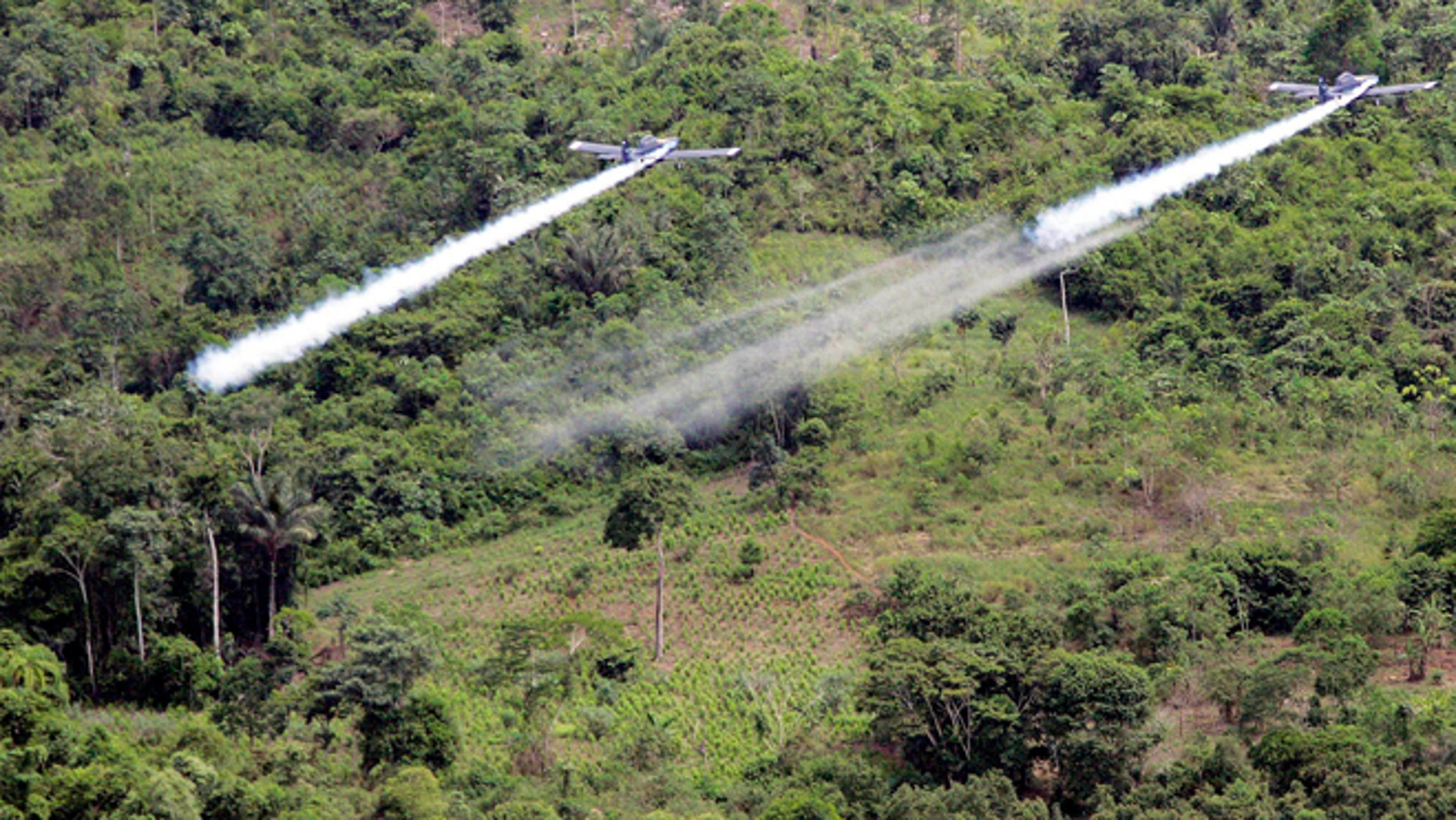FILE - In this Dec. 11, 2006, file photo, two AT- 802 planes are seen fumigating coca fields in San Miguel, Colombia. Cultivation of the leaf used to make cocaine skyrocketed in 2014 in Colombia, according to a new White House report released partially on Monday, May 4, 2015, thatâs likely to pressure the government to preserve a threatened U.S. aerial eradication program thatâs been at the heart of the drug war for over a decade. (AP Photo/Fernando Vergara, File)