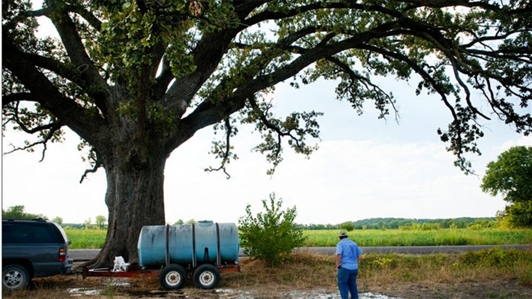 John Sam Williamson stands in front of the largest known bur oak tree anywhere. He told the Columbia Daily Tribune that he plans on watering the tree with 1,600 gallons each week for the next several weeks.