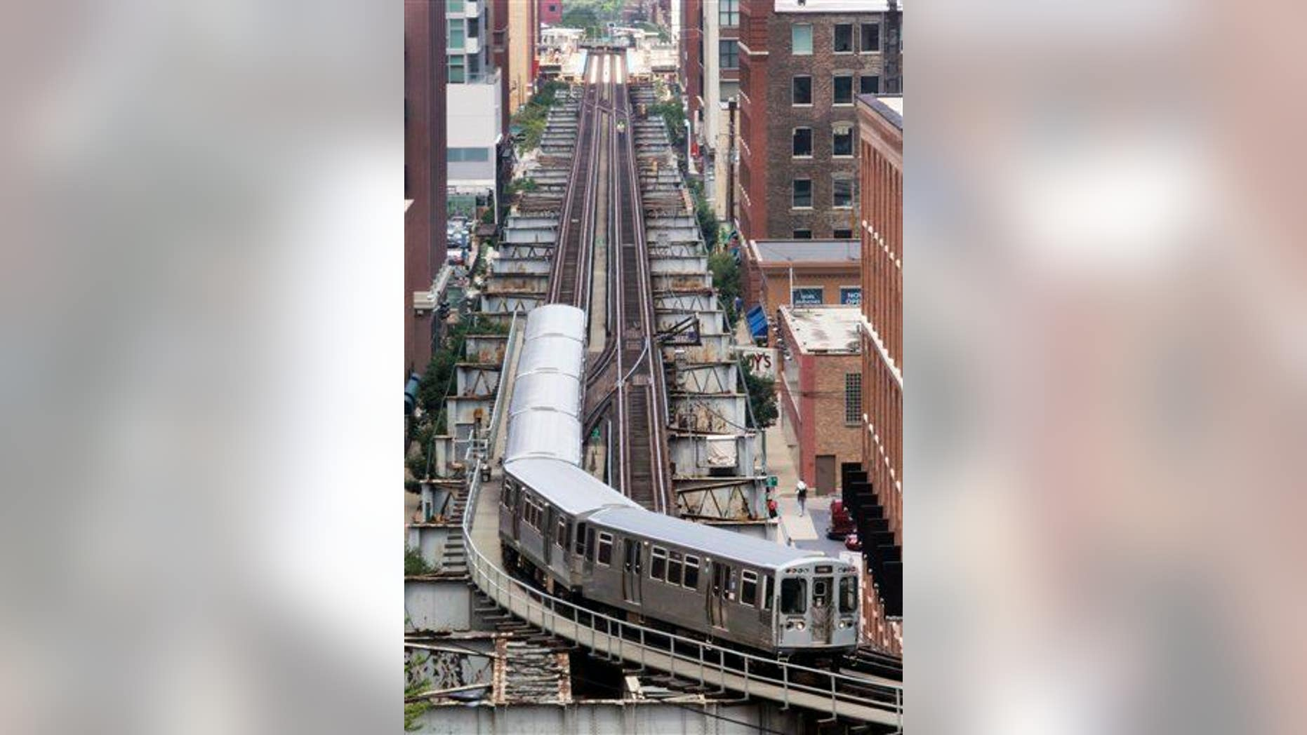 A Brown line L train is shown in this file photo.