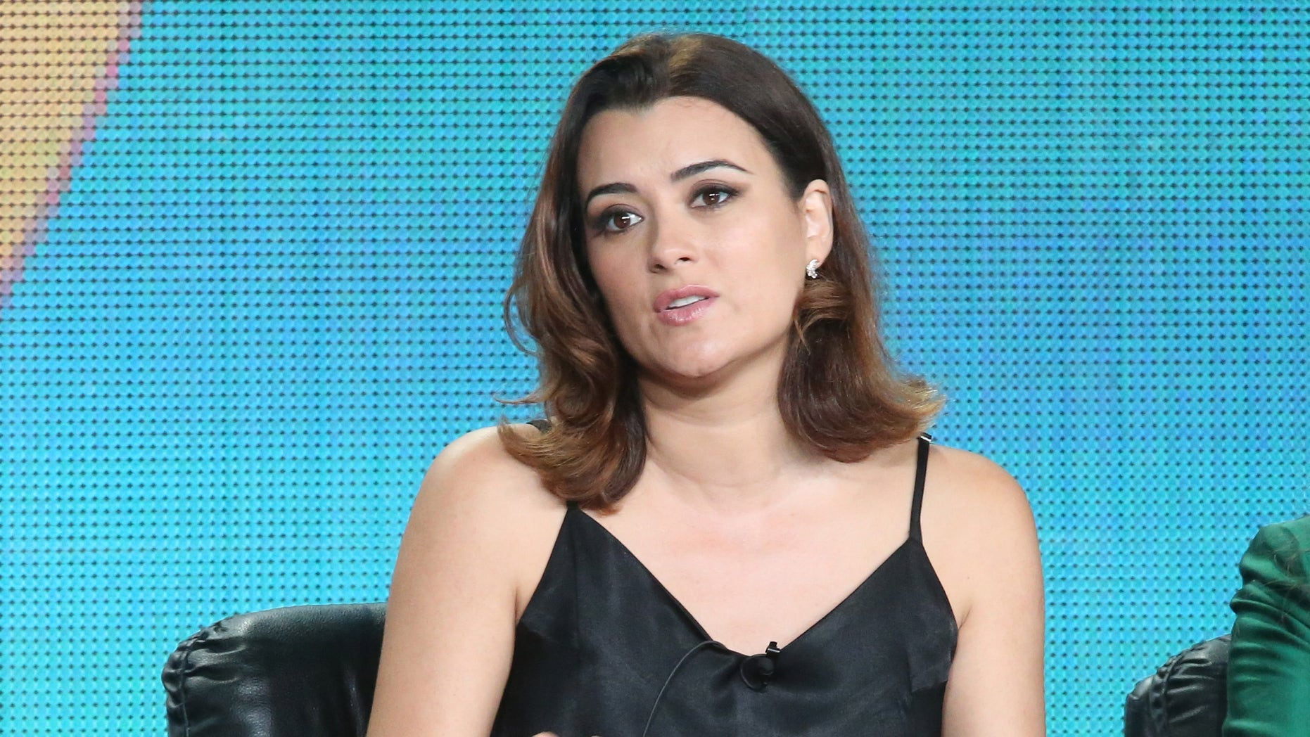 PASADENA, CA - JANUARY 12:  Actress Cote de Pablo speaks onstage during 'The Dovekeepers ' panel as part of  the CBS/Showtime 2015 Winter Television Critics Association press tour at the Langham Huntington Hotel & Spa on January 12, 2015 in Pasadena, California.  (Photo by Frederick M. Brown/Getty Images)