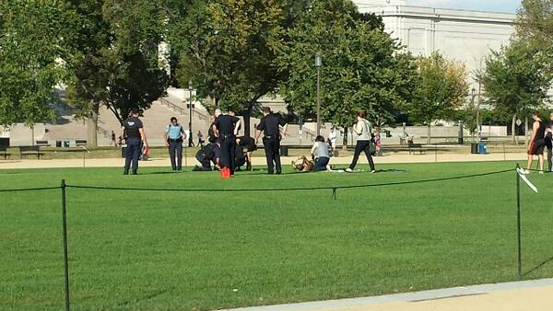 Oct. 4, 2013: Authorities respond to a man who reportedly set himself on fire on the National Mall.