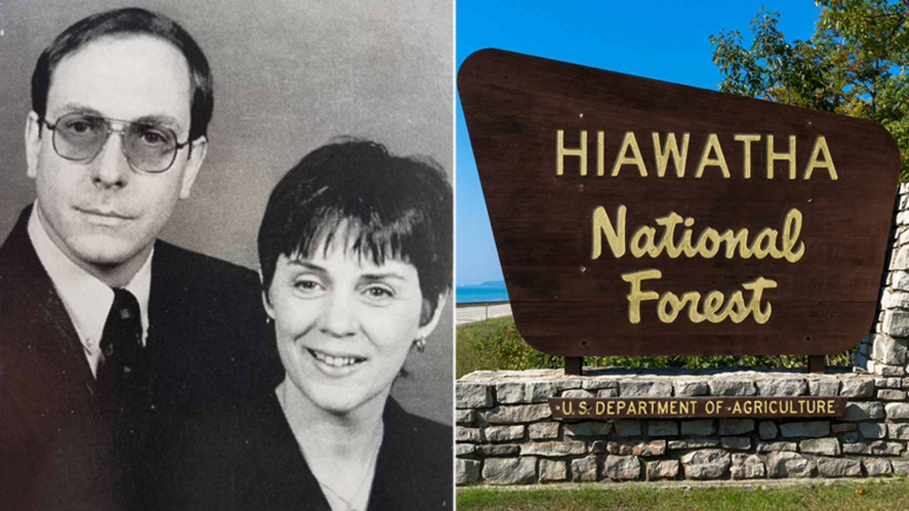 Mark and Janet Davies were in the small plane at the time of its disappearance in September 1997. Wreckage of a small plane with the same tail number as the aircraft the Davies owned was discovered Wednesday in the Hiawatha National Forest in St. Ignace, Mich.