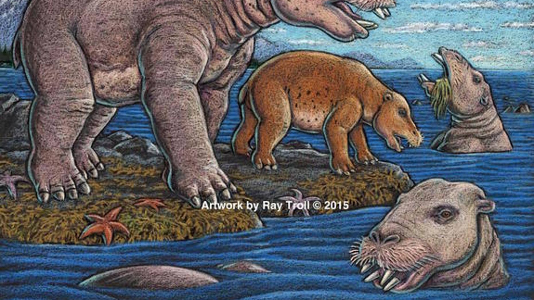 An illustration of the newfound species of hippopotamus-size mammals from Unalaska that suction-fed on shoreline vegetation.