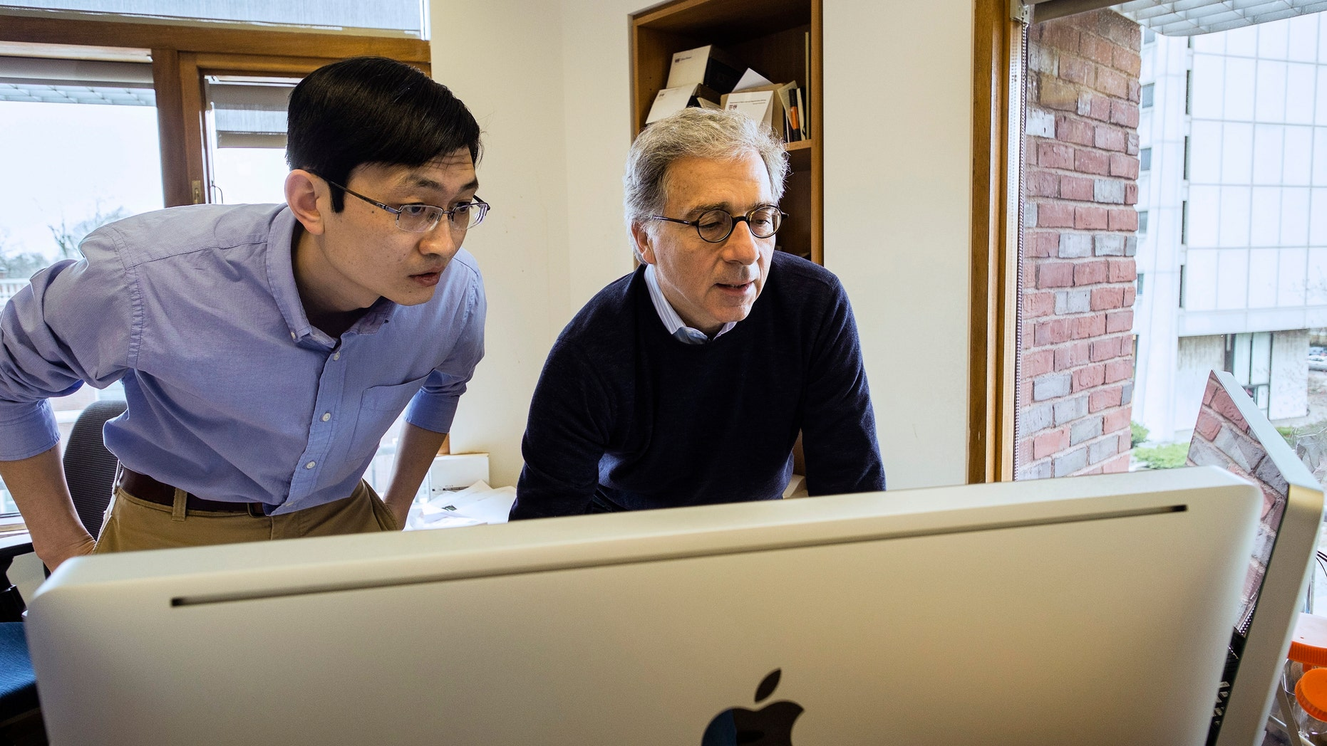 Harvard Stem Cell Institute Co-Director Doug Melton, right, and Peng Yi, a post doctoral fellow in his lab, review data from recent experiments in Melton's lab in Cambridge, Mass. Melton and Yi have identified a hormone that can sharply boost a mouse's supply of cells that make insulin, a discovery that may someday provide a diabetes treatment.