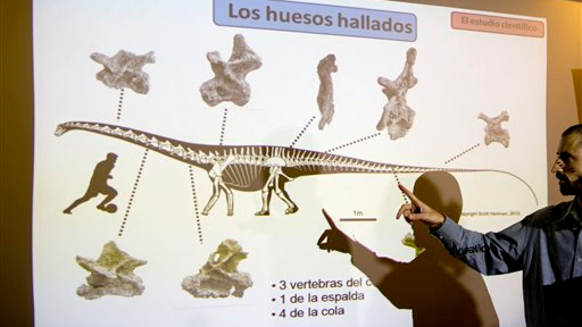 Paleontologist Pablo Gallina in Buenos Aires, Argentina, Thursday, May 15, 2014.